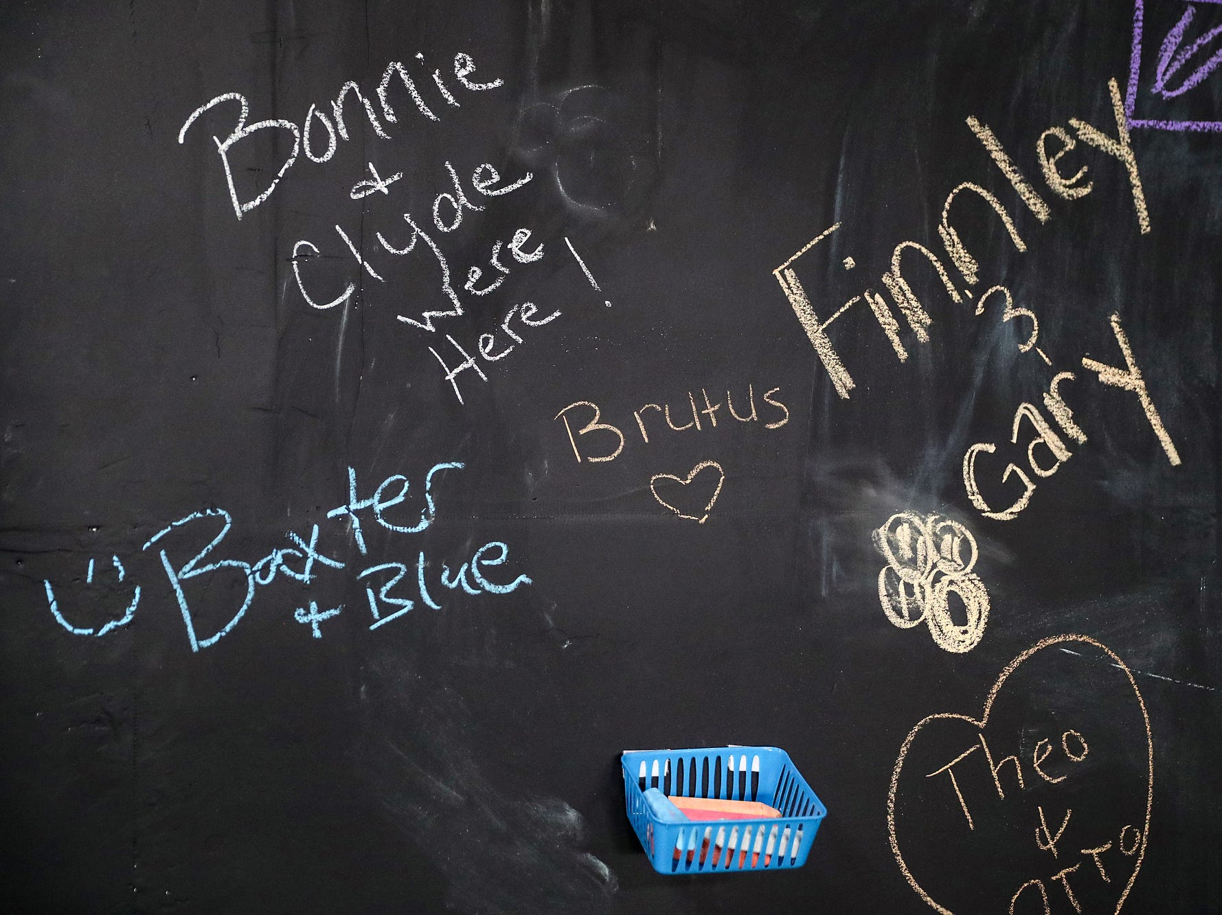 A chalk wall is signed by guests during the grand opening of Indy's Indoor Bark Park in Indianapolis, Saturday, Jan, 5, 2019. The large indoor space offers owners a place to exercise their dogs regardless of the weather. Membership options include single-day, multi-day and annual passes.
