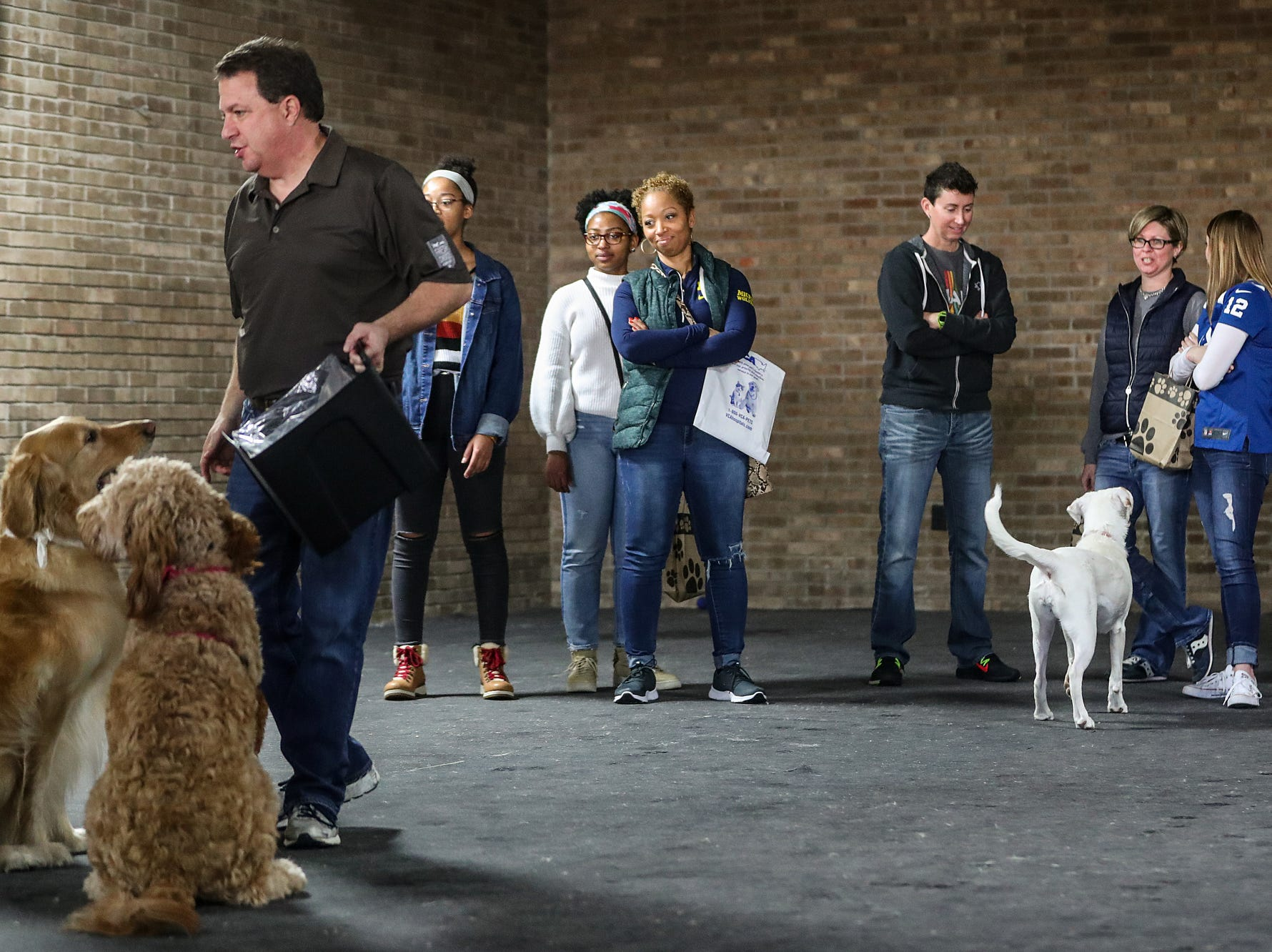 Owners and friends watch as dogs romp around during the grand opening of Indy's Indoor Bark Park in Indianapolis, Saturday, Jan, 5, 2019. The large indoor space offers owners a place to exercise their dogs regardless of the weather. Membership options include single-day, multi-day and annual passes.