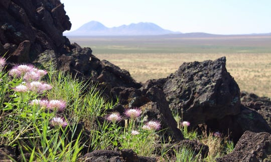 The Aden Lava Flow Wilderness Study Area is 20 miles southwest of Las Cruces in the Chihuahuan Desert.