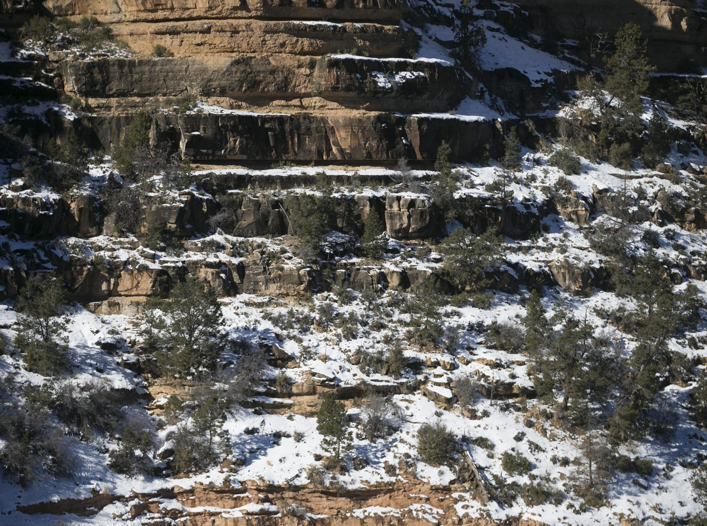 Snow rests along a cliff wall at Grand Canyon National Park on Jan. 4, 2019. The park was staffed at minimum capacity due to the government shutdown but retained much of its services due to an executive order issued by Arizona Gov. Doug Ducey to run the park with state funds in the event of a shutdown.