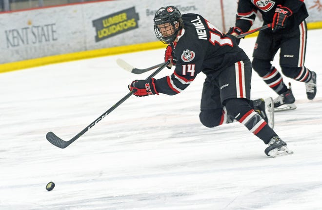 St. Cloud State senior Patrick Newell looks to break into the offensive zone against Union College at the Three Rivers Classic invitational on Friday.