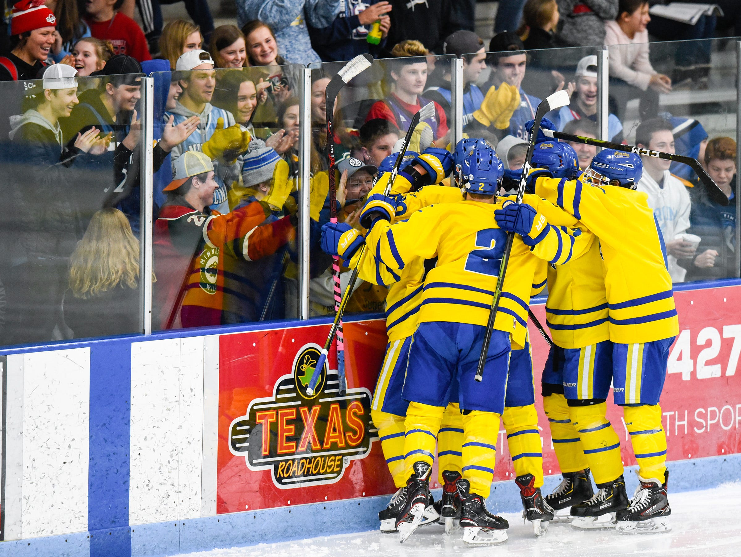 St. Cloud Cathedral players and fans celebrate a goal during the second period Friday, Jan. 4, at the MAC in St. Cloud.