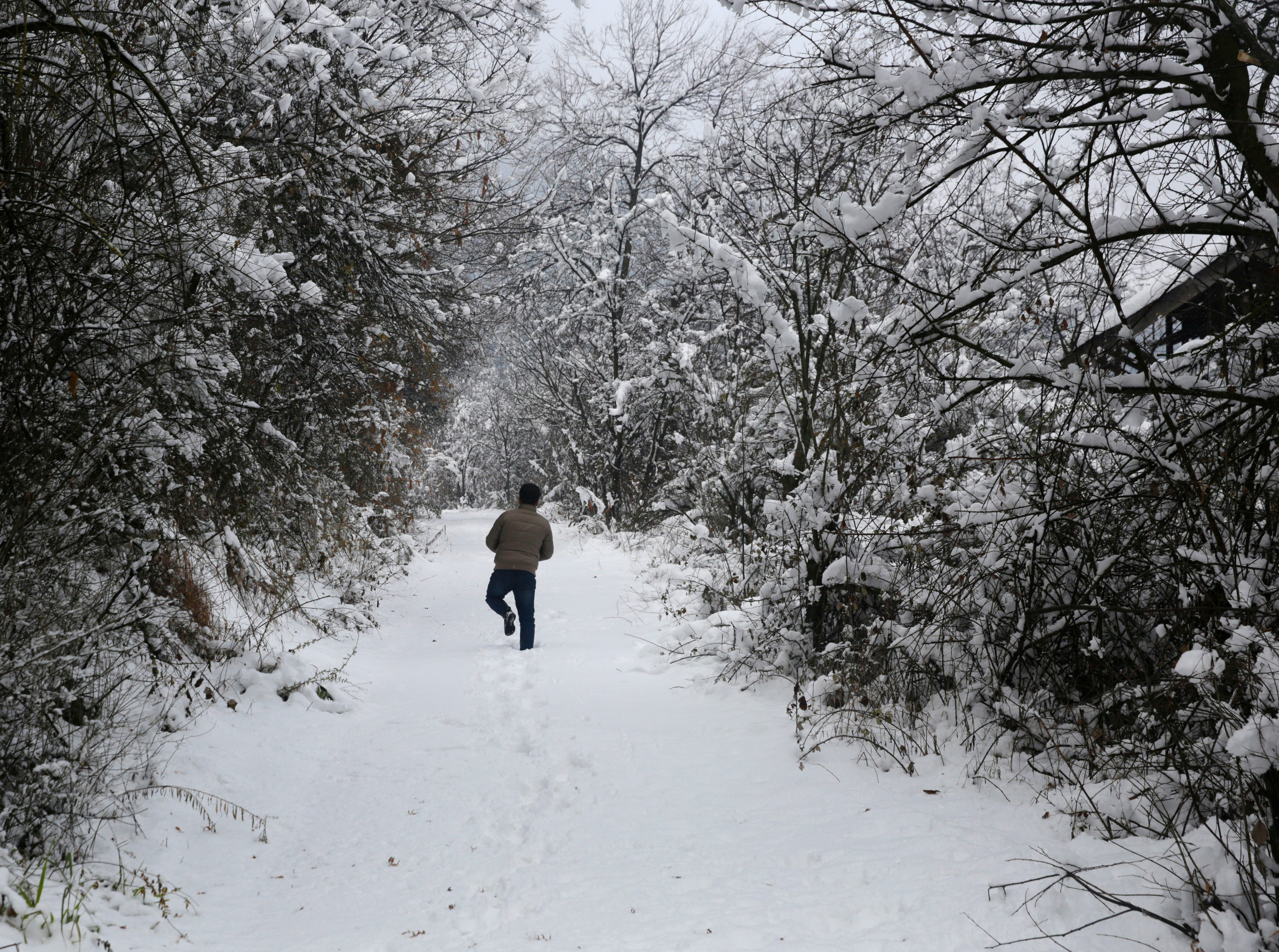 A Kashmiri man walks near snow covered trees and road in Srinagar, the summer capital of Indian Kashmir on Jan. 5, 2019. The strategic Srinagar-Jammu highway was closed for traffic for second consecutive day after snowfall on 04 January. All morning flights were cancelled at Srinagar airport due to poor visibility and snowfall, however air traffic was resumed in the afternoon according to local reports.