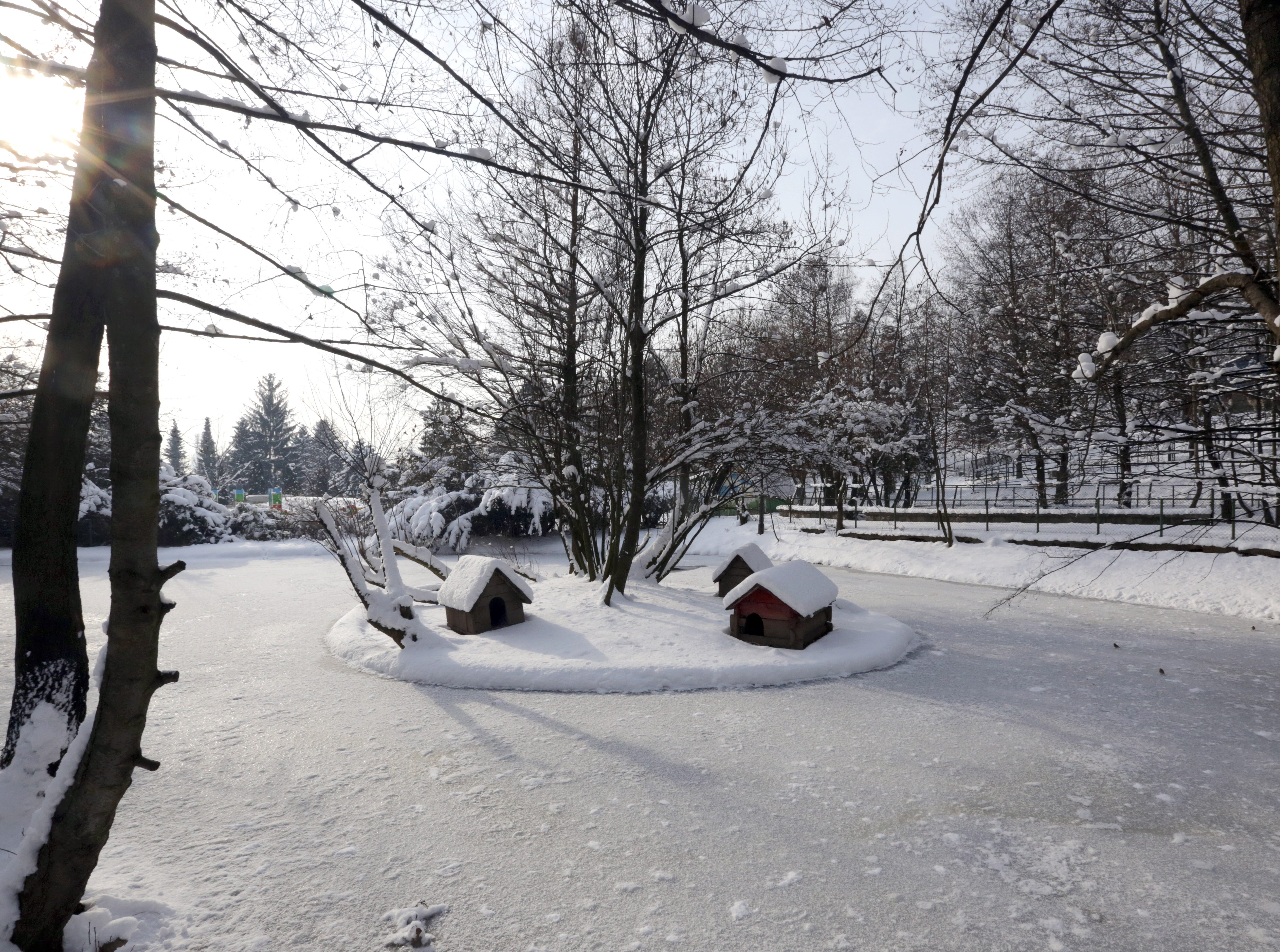 A frozen pond is covered in snow at an animal enclosure at the zoo in Sarajevo, Bosnia and Herzegovina on Jan. 5, 2019.