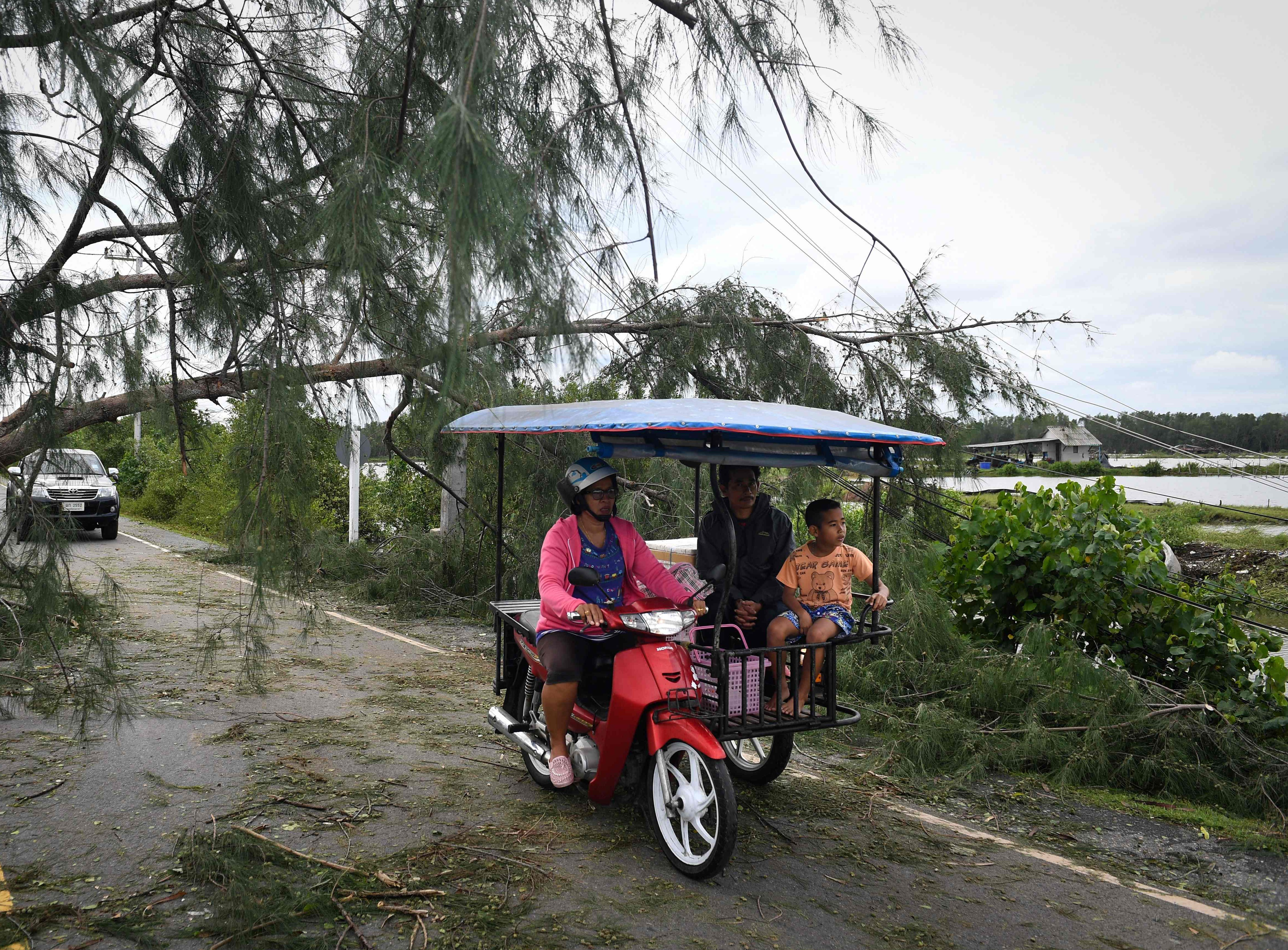 Residents drive under a fallen tree in the aftermath of tropical storm Pabuk in the southern Thai province of Nakhon Si Thammarat on Jan. 5, 2019. Floods and blackouts caused by Tropical Storm Pabuk left nearly 30,000 people in evacuation shelters across southern Thailand on January 5, as relieved tourists stranded on islands further north were spared the worst and began to plot routes home.