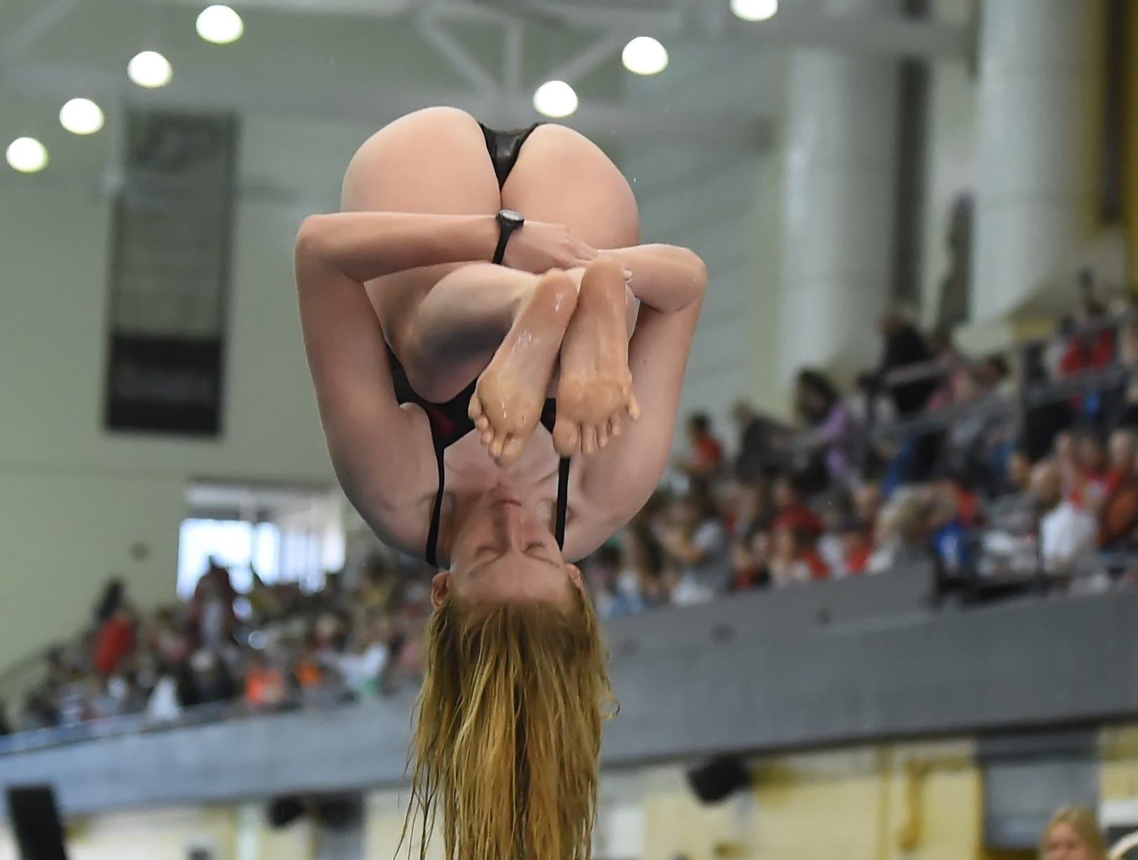 McCutcheon's Elise Hertling performs on the one meter spring board Saturday in the North Central Conference Swimming and Diving Championships at Purdue.