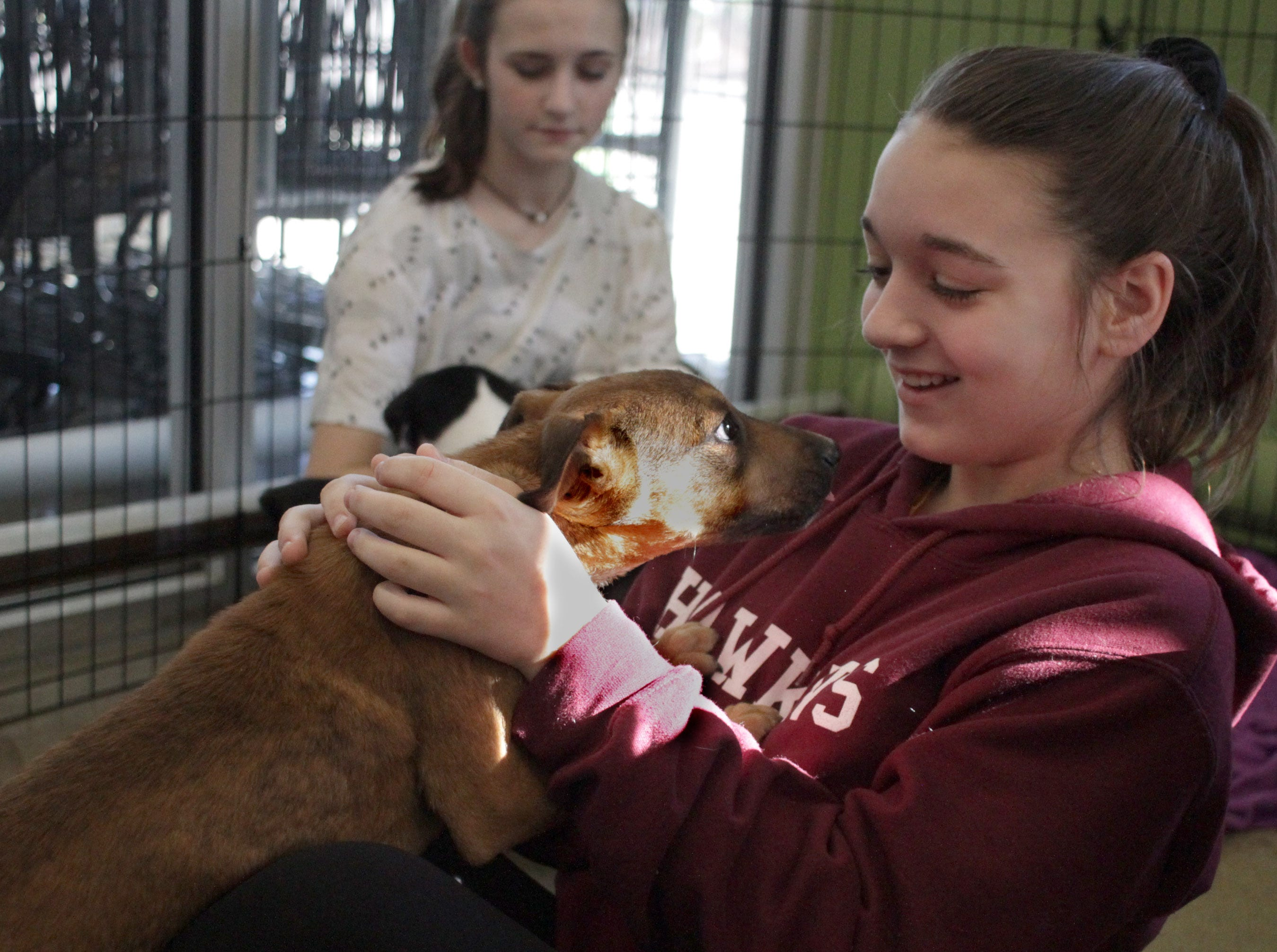 Skylar Martin plays the with the puppies at Jojo's Doghouse adoption event at Pet Supplies Plus in Hendersonville, TN on Saturday, January 5, 2019.