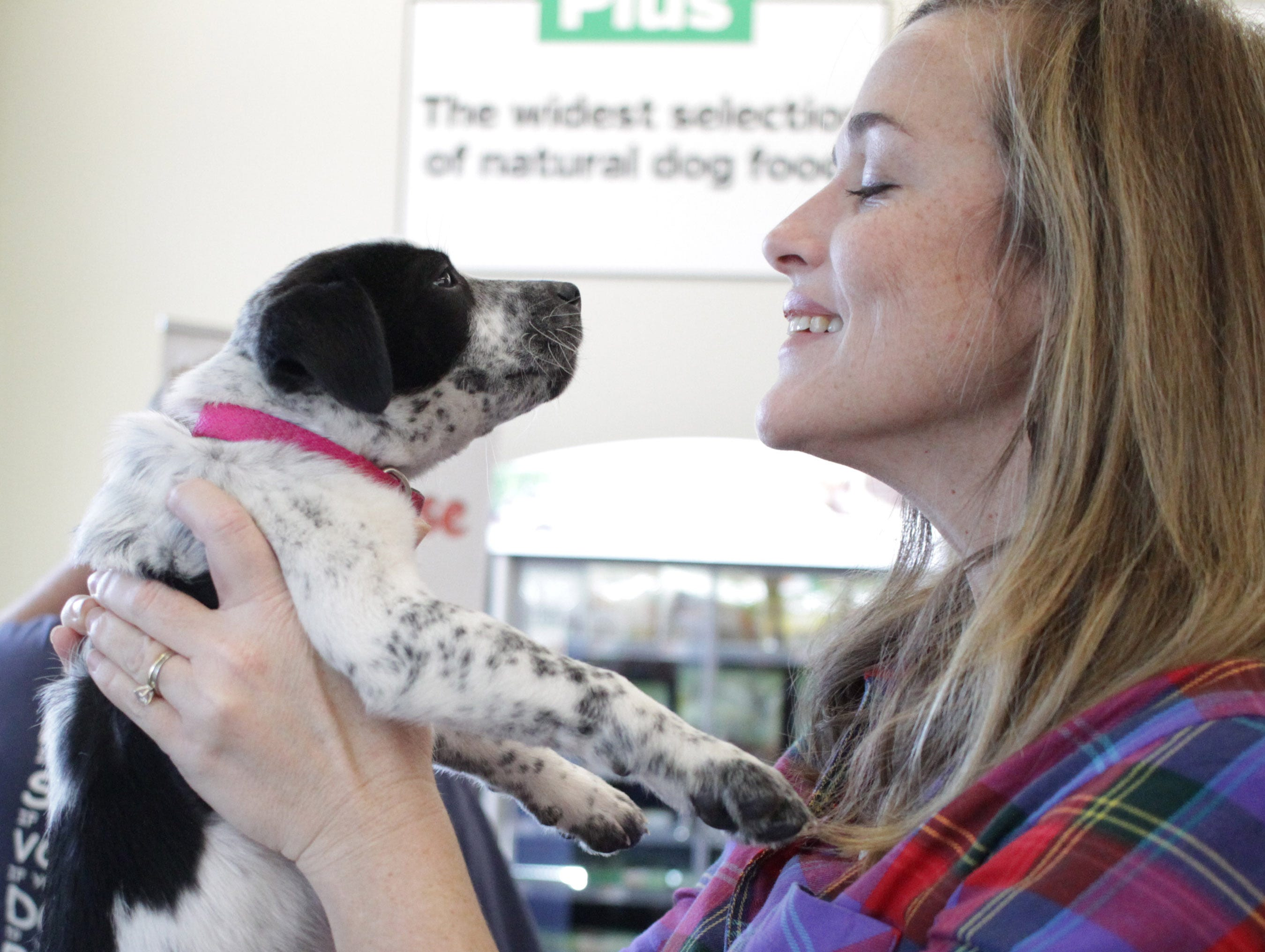A puppy looks a woman in the eye at Jojo's Doghouse adoption event at Pet Suppiles Plus in Hendersonville, TN on Saturday, January 4, 2019.