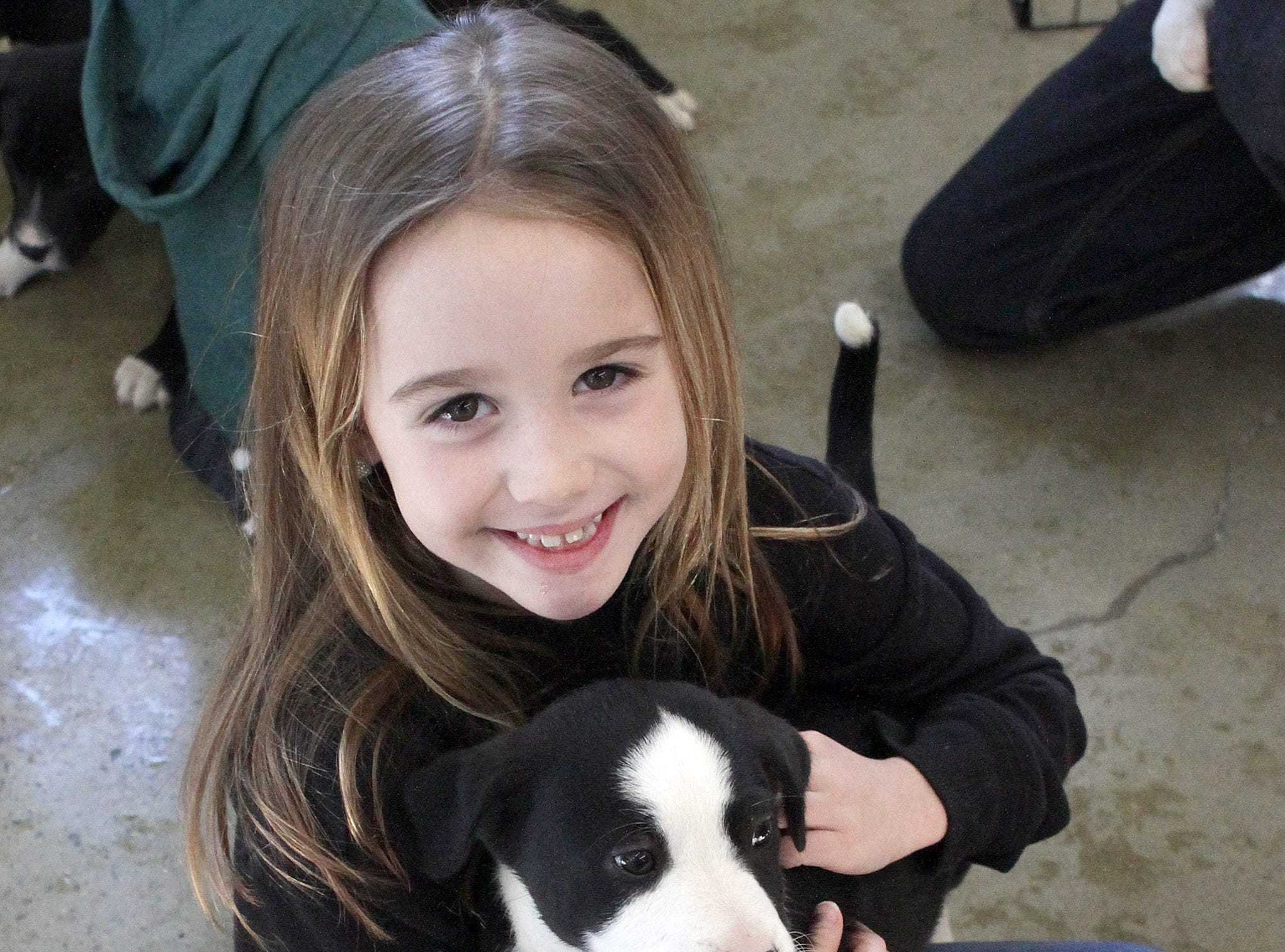 Lily Evans (8) has fun with a puppy at Jojo's Doghouse adoption event at Pet Supplies Plus in Hendersonville, TN on Saturday, January 5, 2019.