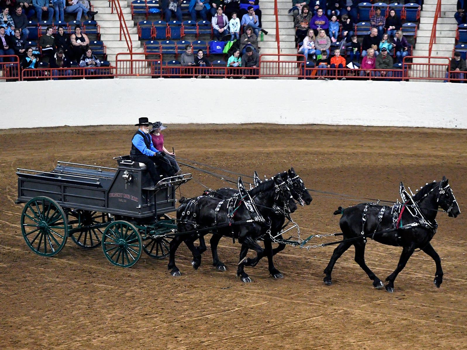 The 103rd Pennsylvania Farm Show, Sunday, January 6, 2019. John A. Pavoncello photo