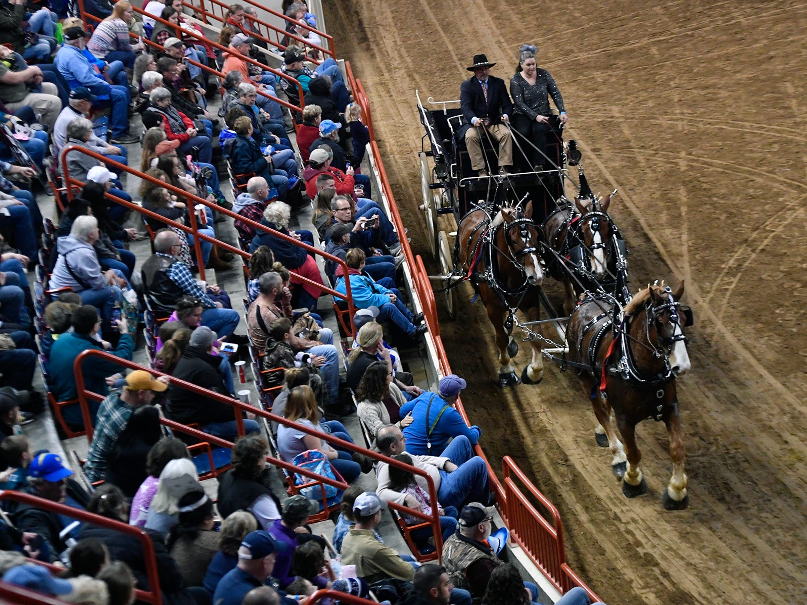 The three horse or 'Unicorn' team from Taylor Bennett Farm in Glen Rock takes part in the Draft Horse Competition during the 103rd Pennsylvania Farm Show, Sunday, January 6, 2019. John A. Pavoncello photo