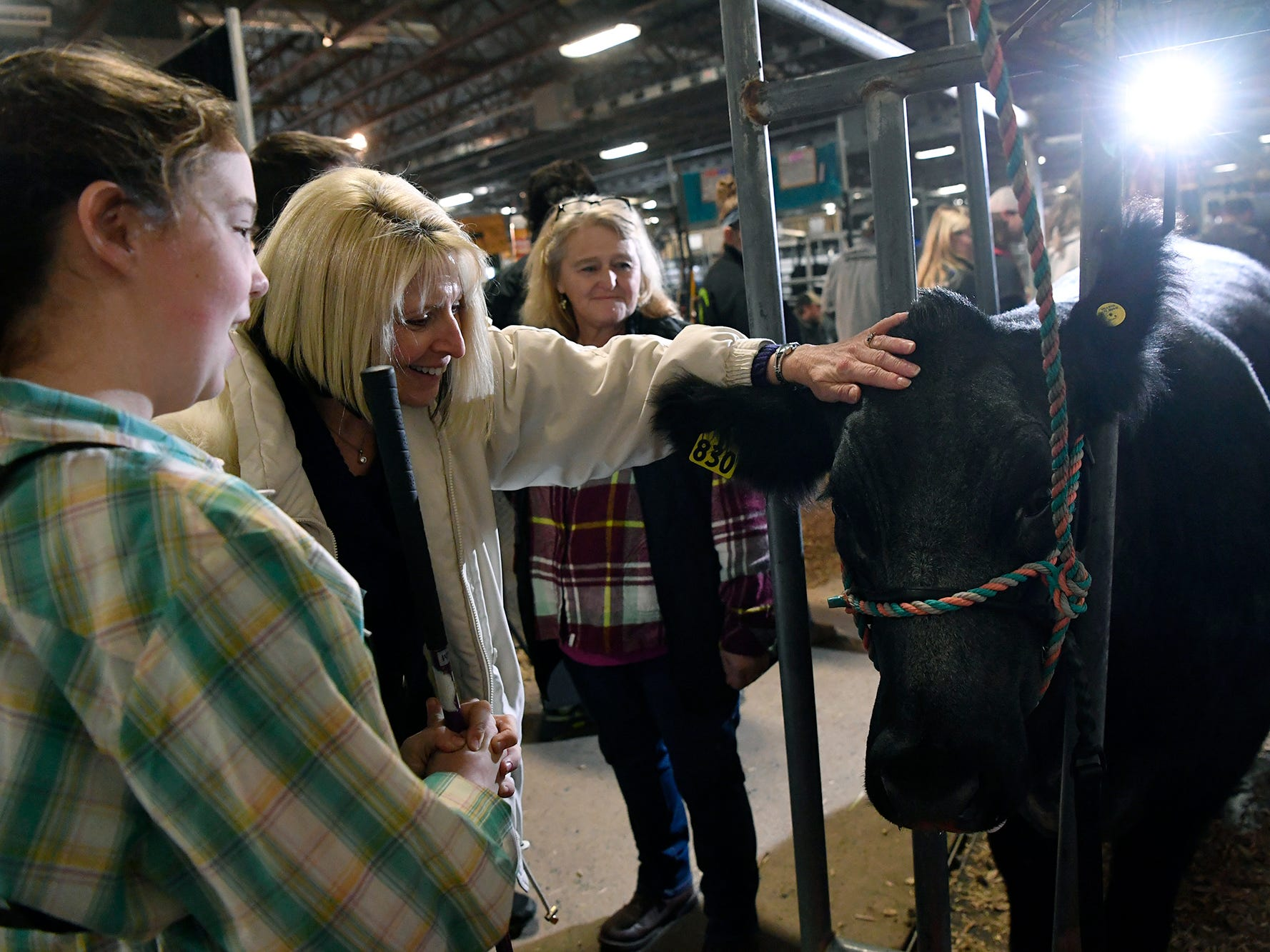 Carol Gotshall, center of Mt. Wolf, pets Cayla Fisher's cow Thunder from Hake Valley Farm in Etters during the 103rd Pennsylvania Farm Show, Sunday, January 6, 2019. John A. Pavoncello photo