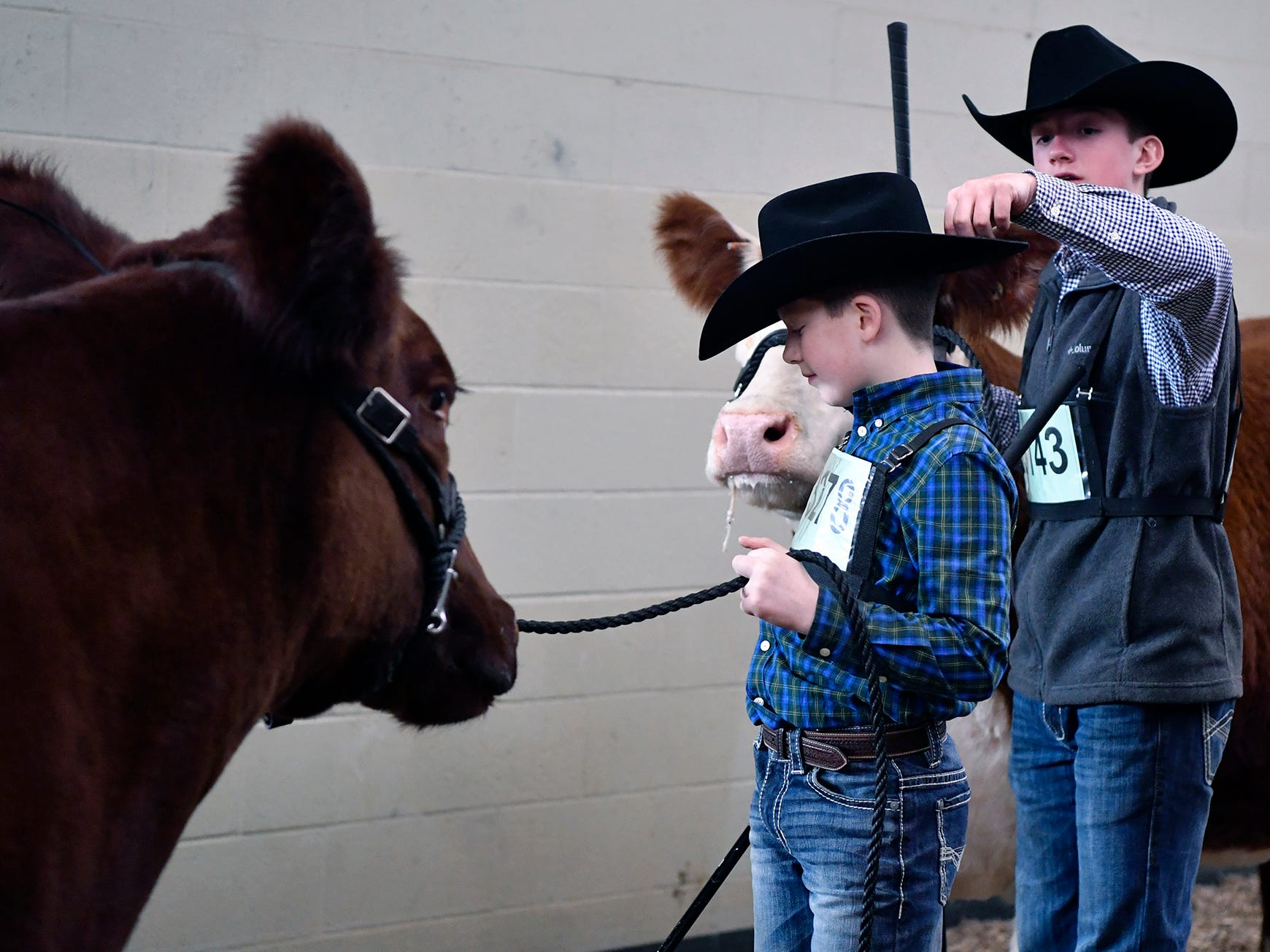 Jay Allen, 13 at right, cleans dirt of the back of his 11-year-old brother Ben's hat before they enter the judging ring with their cows during the 103rd Pennsylvania Farm Show, Sunday, January 6, 2019.  The Allen brothers are from Saxonburg PA.John A. Pavoncello photo