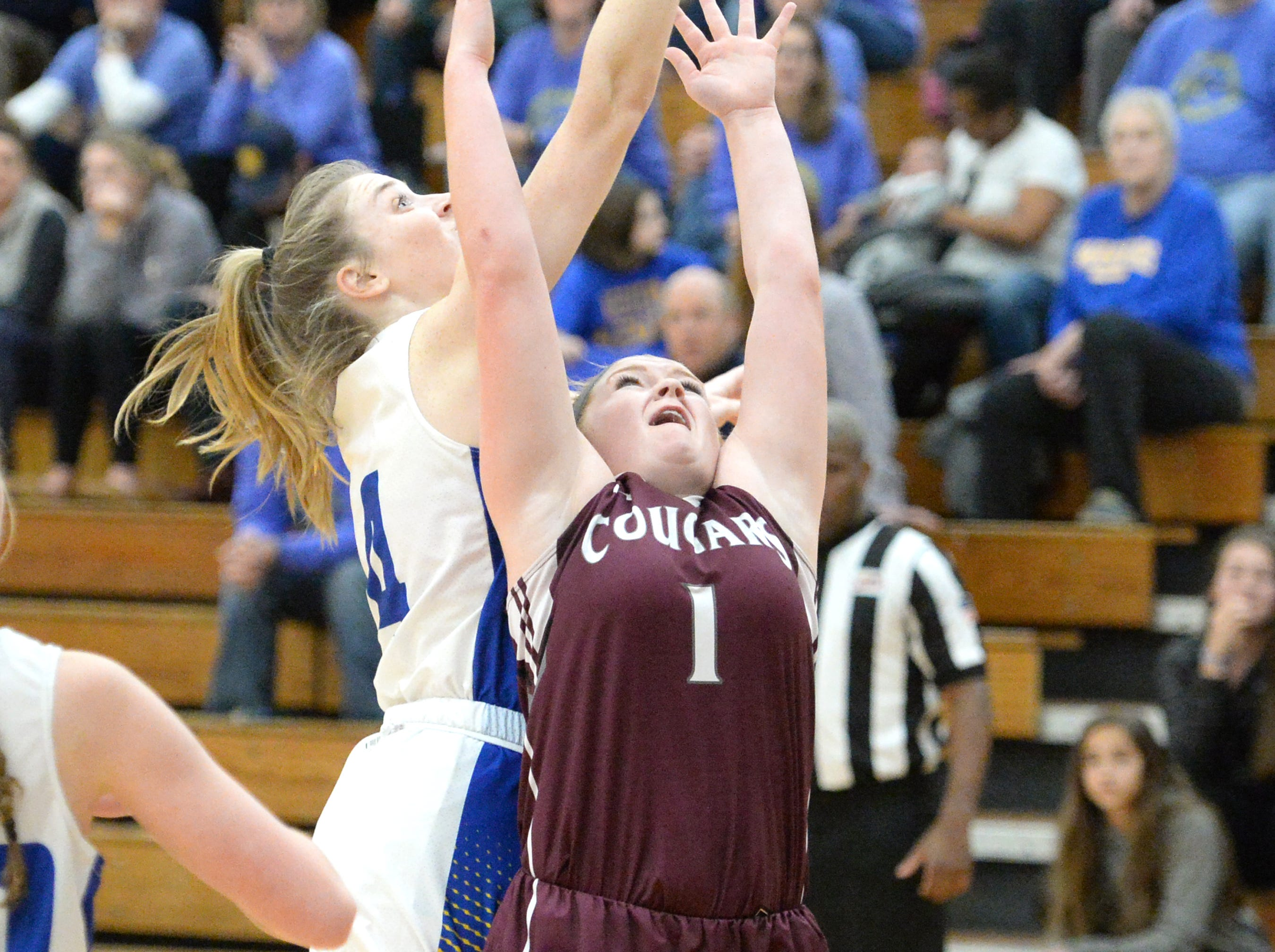 Stuarts Draft's Madi Armentrout battles for a rebound Saturday at the Play for Preemies Showcase at Western Albemarle High School.