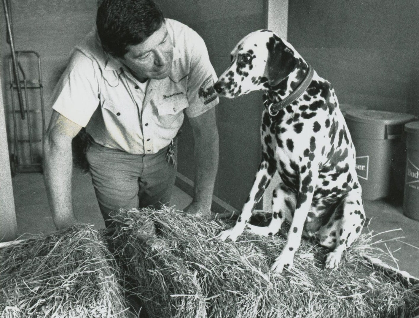 Noel Picard chats with the stable mascot, Bud, at Anheuser-Busch in Fort Collins in September 1990.