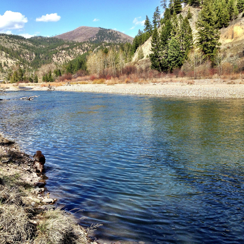 Outdoors briefs: Conservation easement needs your input