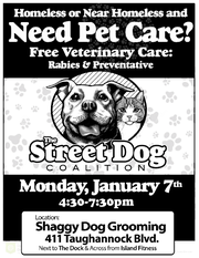 The Street Dog Coalition helps pets of Ithaca homeless with free vet care.