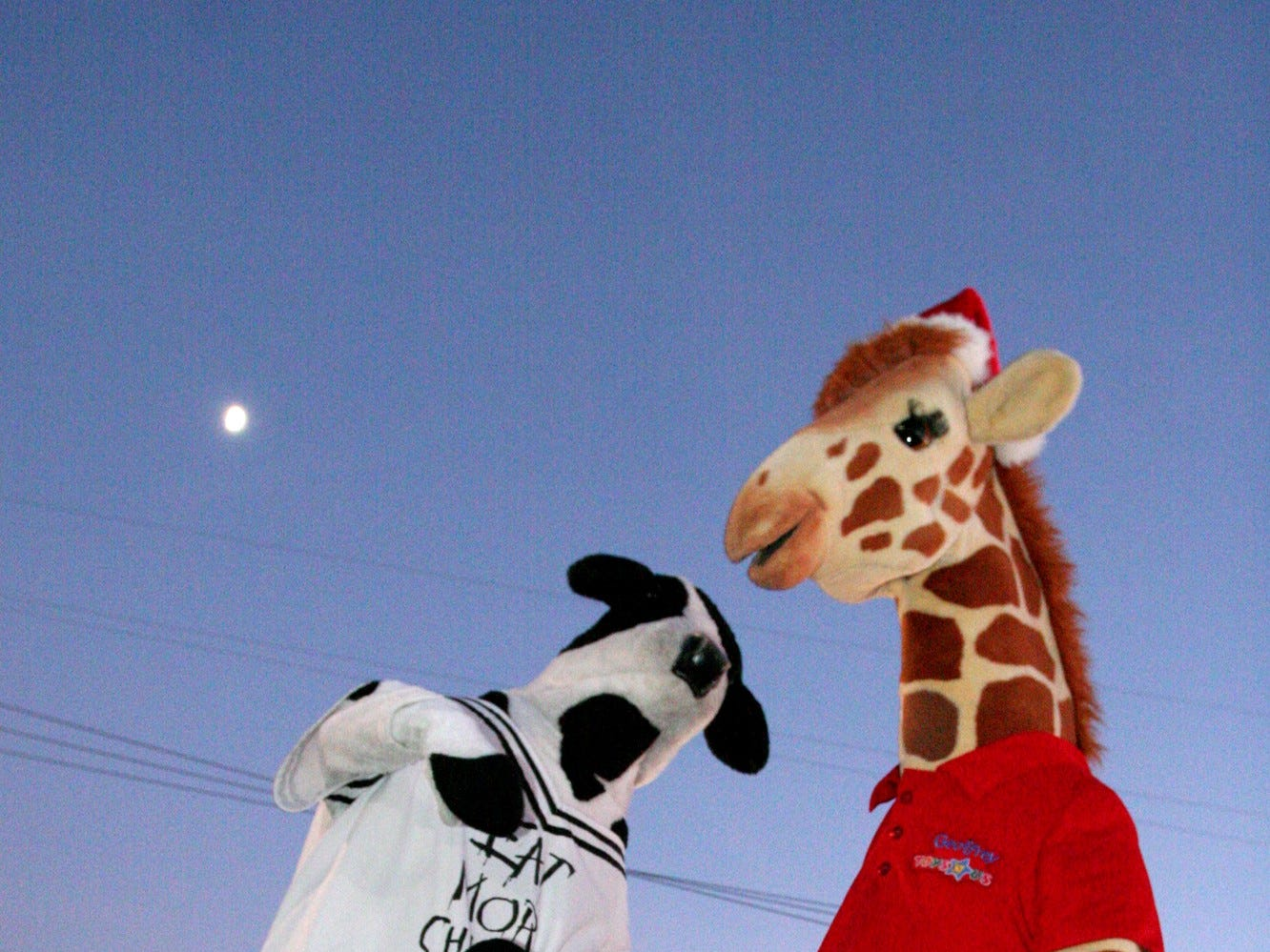 Jeffrey from Toys R' Us and The Cow from Chick-Fil-A dance under the moonlight at the West Town Mall Santa debut Nov. 15.