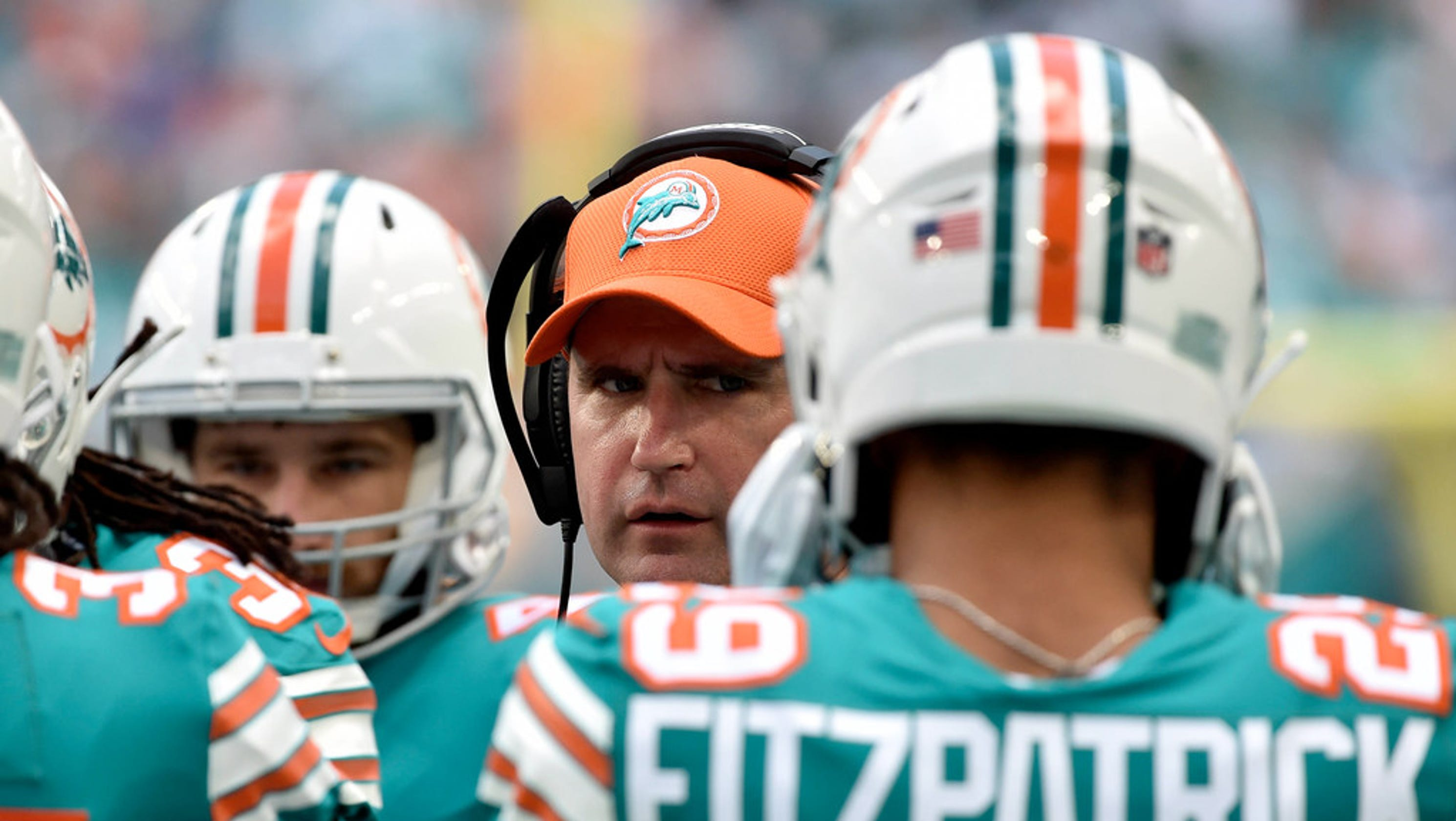 5f999cb4d New Jersey s Darren Rizzi emerges as candidate for Miami Dolphins head  coaching job