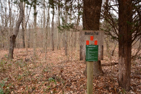 Look for signs marking the Mountain Trail.