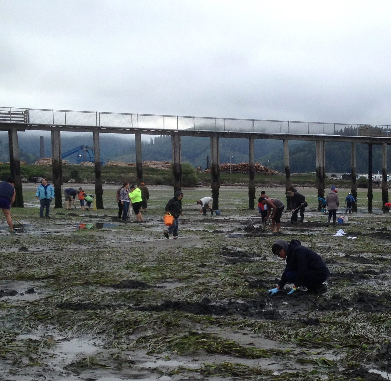Oregon clamming guide 2019: When, where and how you can dig for clams
