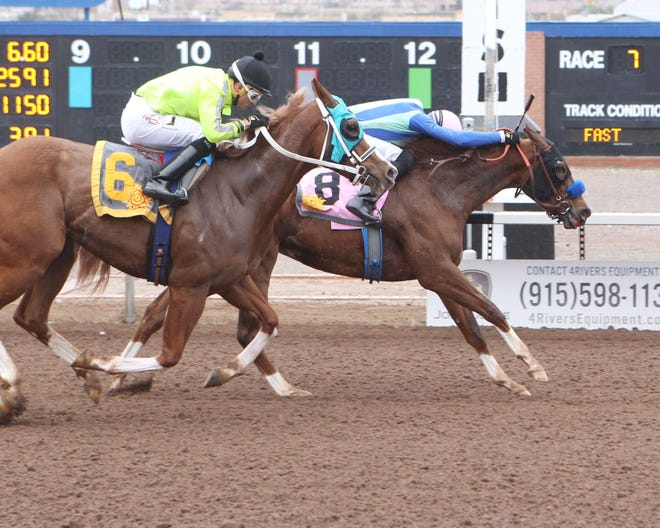 African Heat, who is owned by El Paso's Kirk and Judy Robison, won the La Senora Stakes Sunday at Sunland Park Racetrack & Casino.
