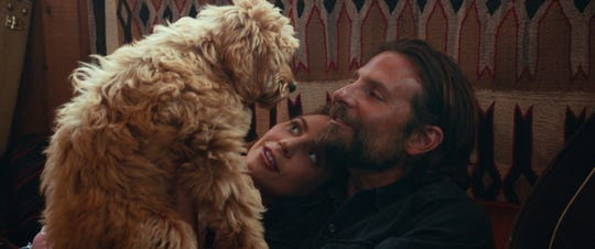 "Lady Gaga and Bradley Cooper star in the musical love story ""A Star Is Born."" But the movie didn't make much of a splash at the Golden Globes, despite going in with five nominations."