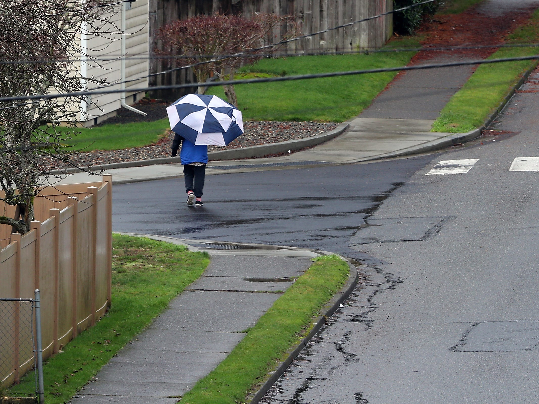 An umbrella toting pedestrian crosses Birch Ave. in Bremerton on Tuesday, January 8, 2019.