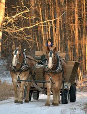 The horse-drawn Wilderness Sleigh Ride takes guests along snow trails with a stop for dinner in the woods.
