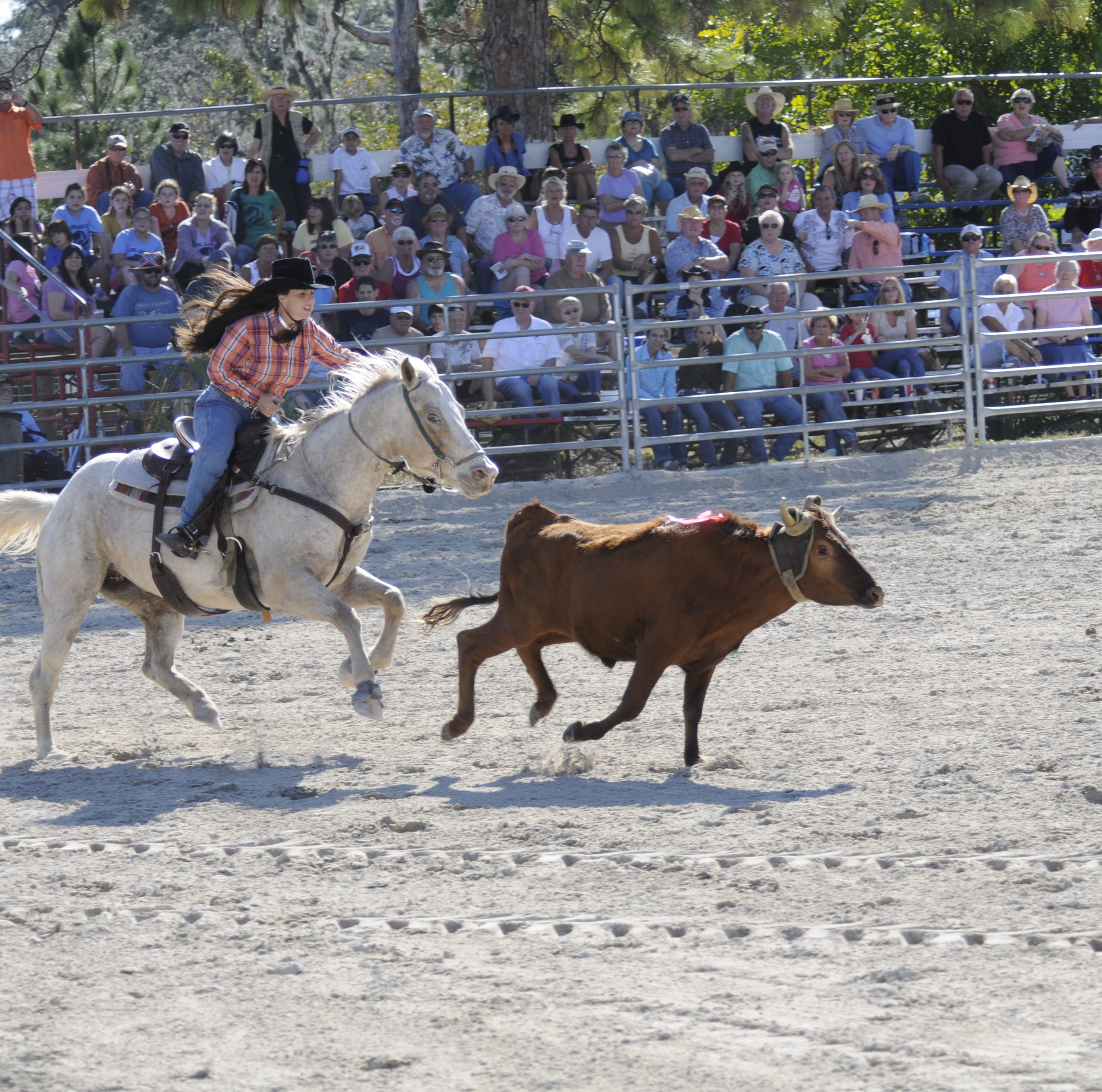 Saddle up for the annual Cracker Day rodeo, back after Hurricane Irma threw it for a year