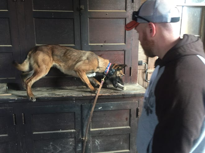 Granville K-9 Officer Moke receives her toy from partner Jon Dailey after a successful discovery of drugs in an upper cabinet during a Bryn Du training exercise.