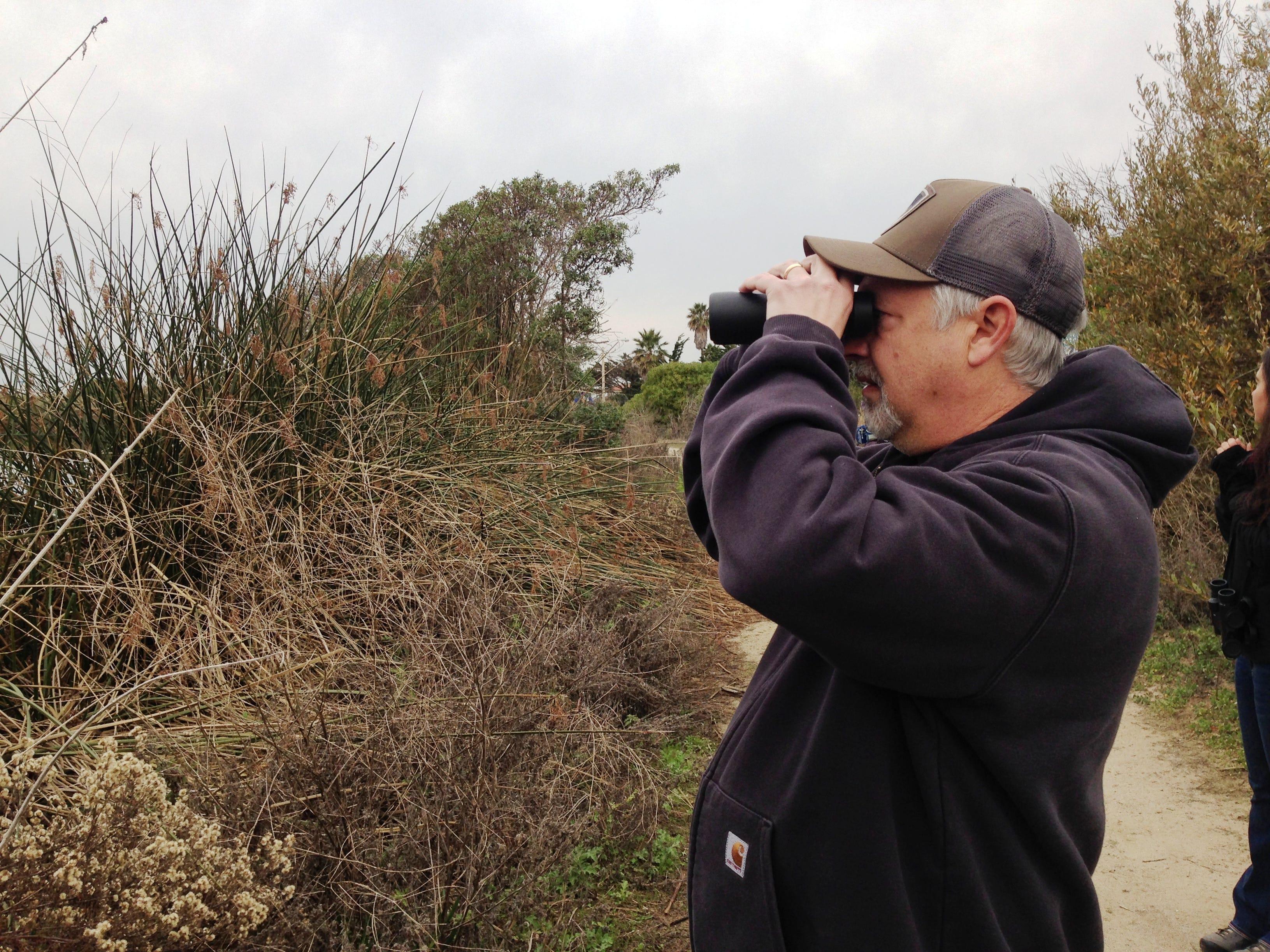 Matt Schaberg uses binoculars to count birds during the Christmas Bird Count on Saturday at the settling ponds near Ventura Harbor.
