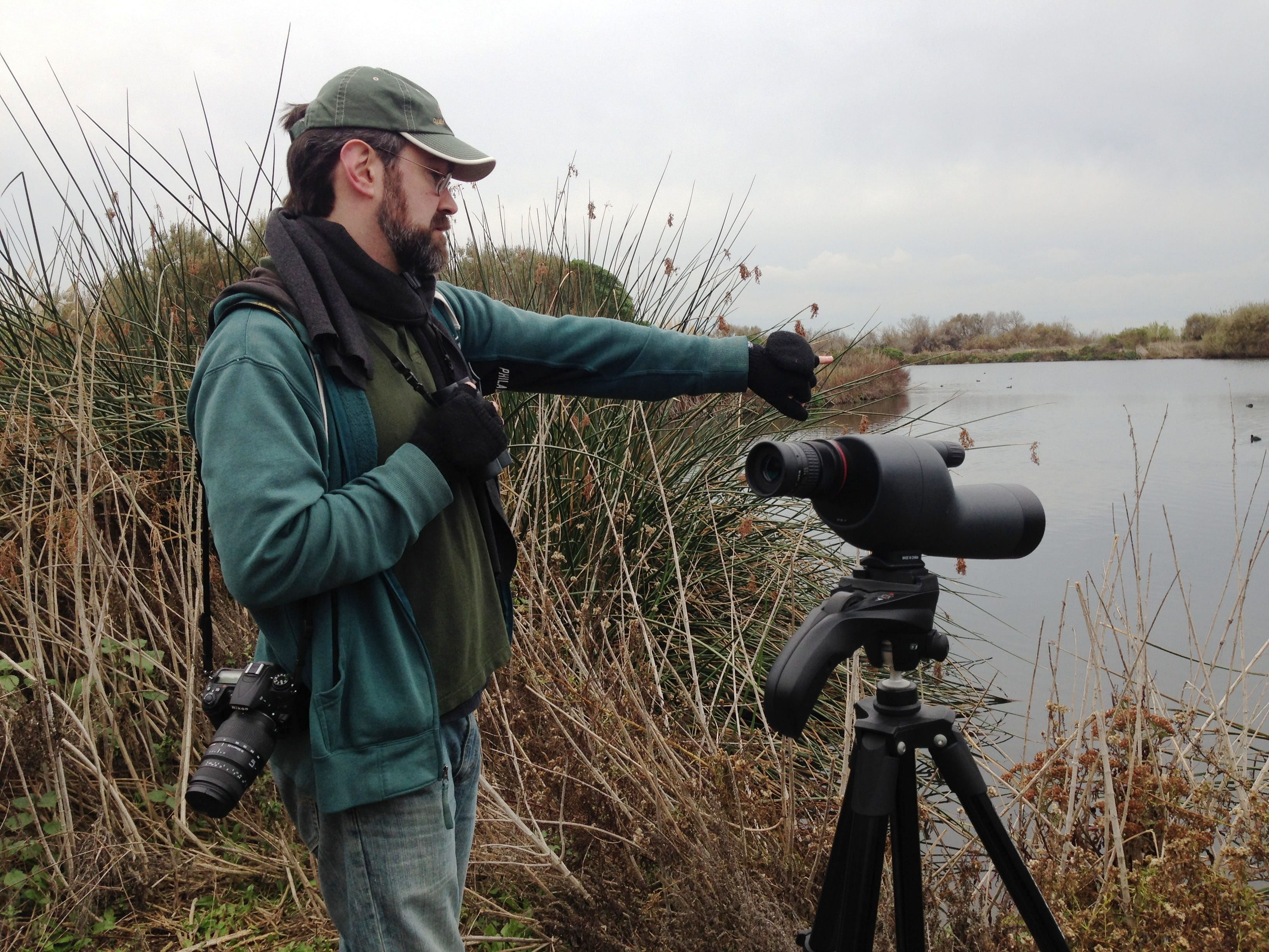 Frank DeMartino, organizer of the Christmas Bird Count in Ventura, points to ducks at the Ventura settling ponds. Last year's local count recorded 175 species and more than 23,000 individual birds.