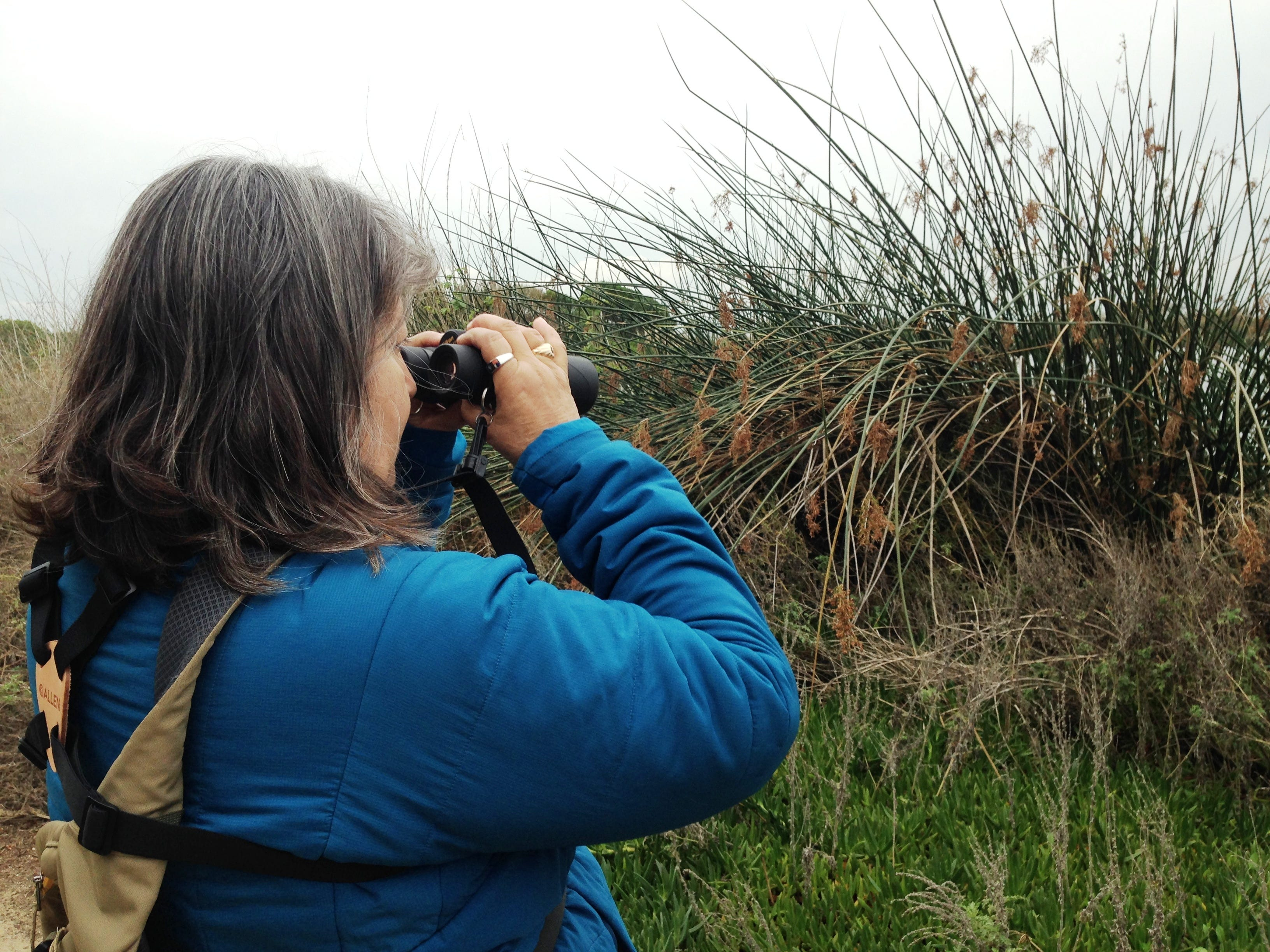 Susanna Corez look at ducks and other birds during the Christmas Bird Count on Saturday at the Ventura settling ponds. This year's local effort is part of the 119th Christmas Bird Count conducted by the National Audubon Society.