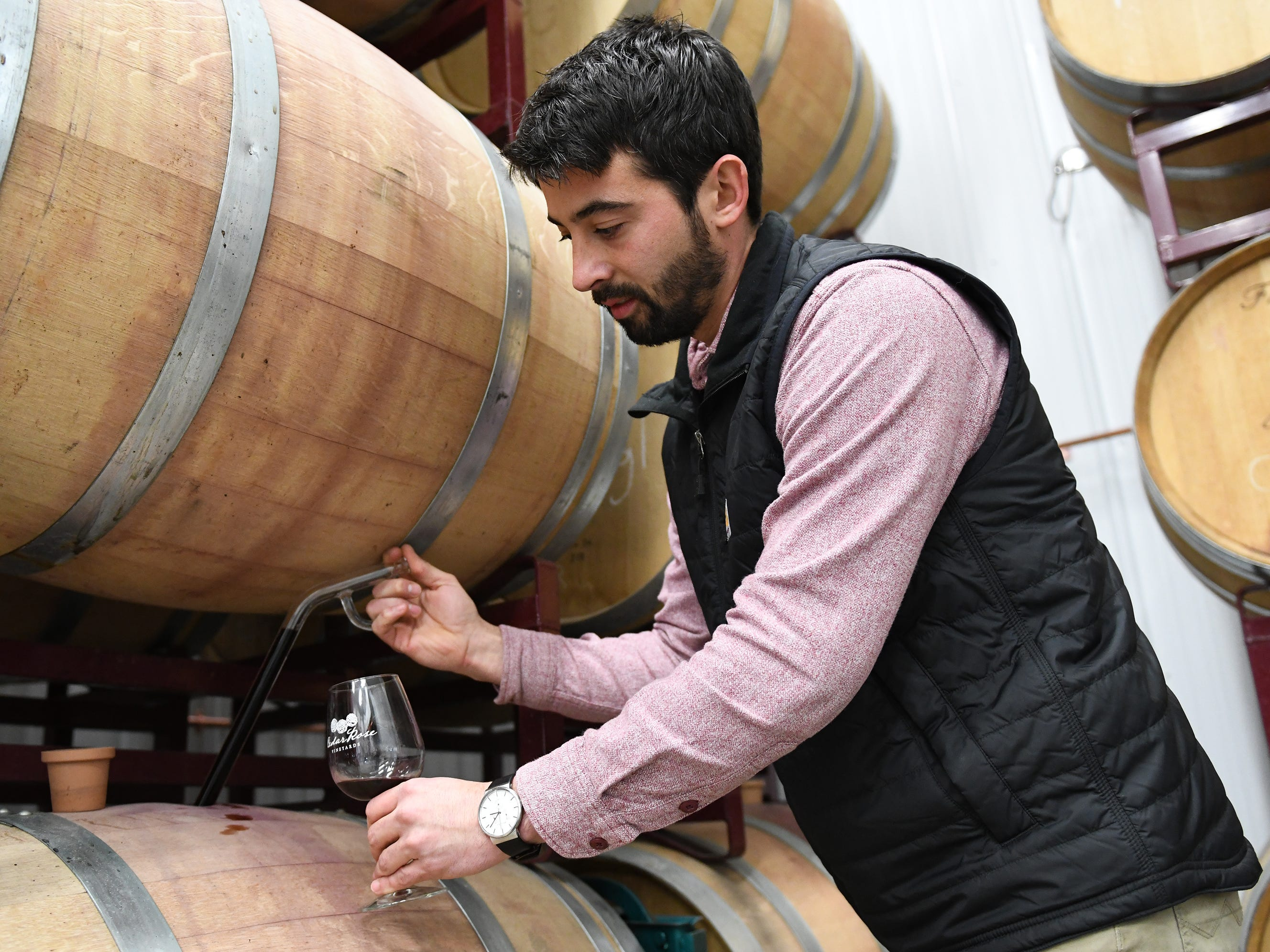 Cedar Rose Vineyards managing partner Steven Becker extracts a barrel sample using a glass wine thief on Tuesday, January 8, 2019.
