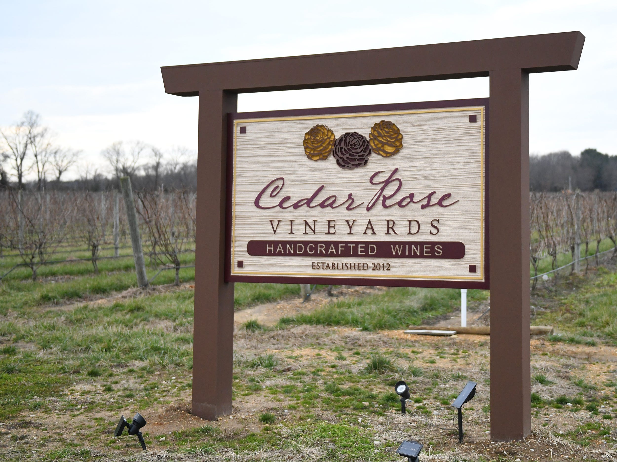 Cedar Rose Vineyards in Rosenhayn recently opened to the public. The facility is currently the only wine tasting room in Cumberland County. 1/8/19