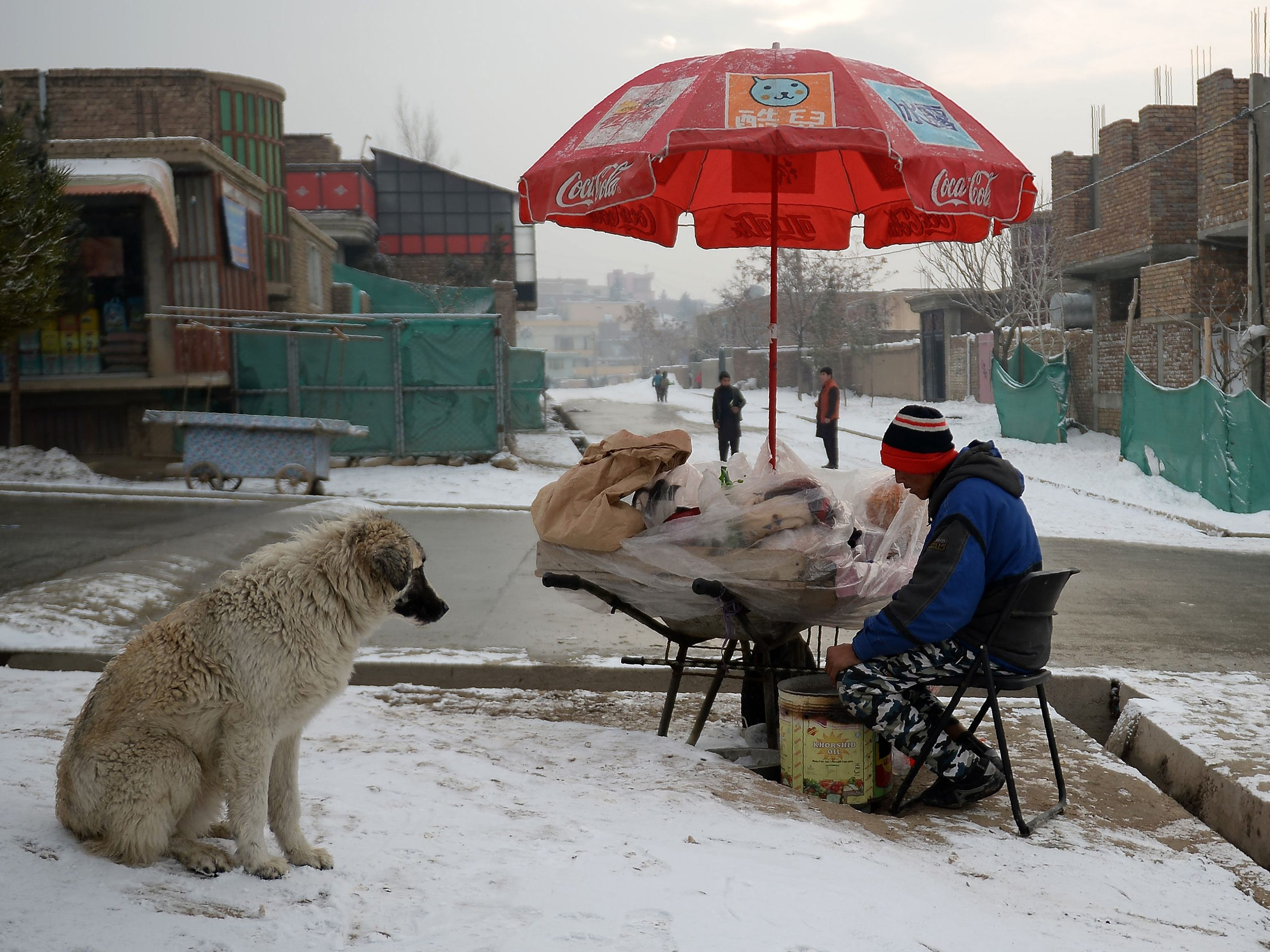 An Afghan dog sits in the snow and ooks at a dried fruit vendor waiting for customers at his stall in Kabul, Afghanistan, Jan. 8, 2019.