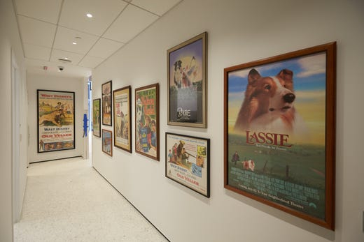 Museum of the Dog to open in New York City