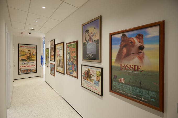 The American Kennel Club Museum of the Dog will open in New York City on Feb. 8 at 101 Park Avenue, steps away from Grand Central Station. The museum houses one of the world's largest collections of canine fine art.