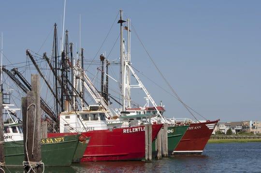 Docked commercial fishing boats at Viking Village in Barnegat Light.
