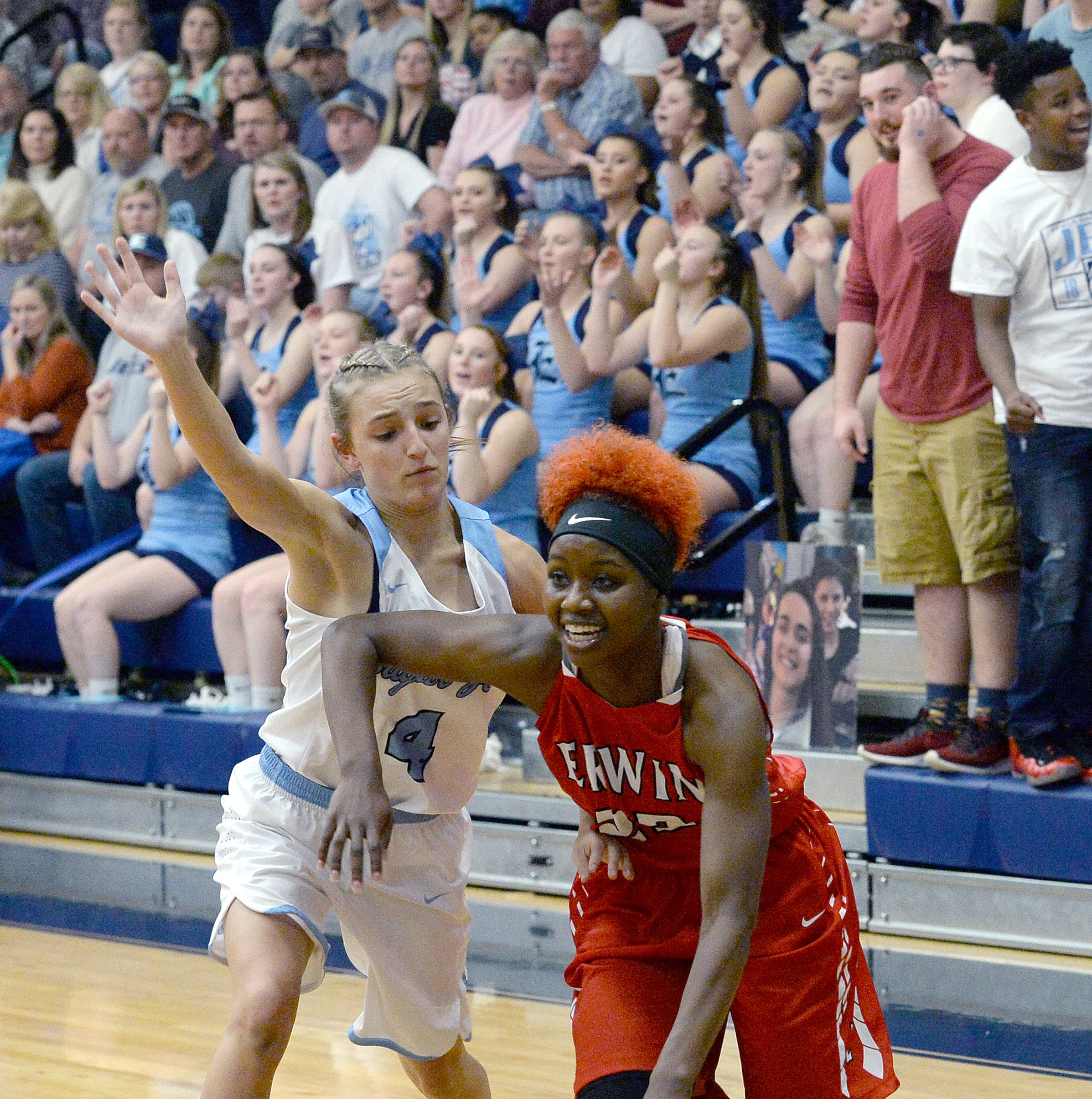 WNC high school girls basketball: Statistical leaders