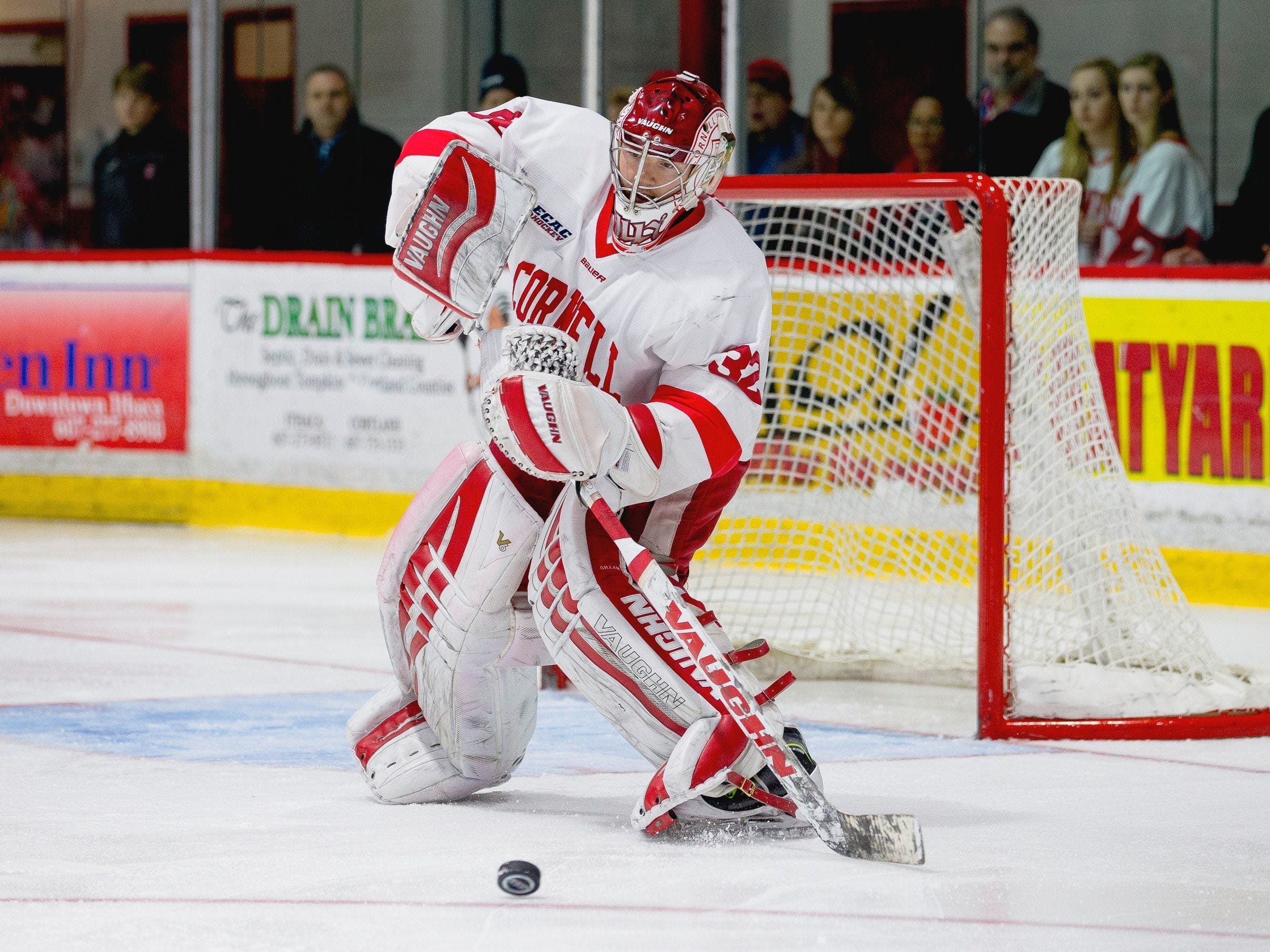 2017: Cornell senior goalie Mitch Gillam has a 21-7-5 record this season with a 2.17 goals-against average, .921 save percentage and three shutouts.