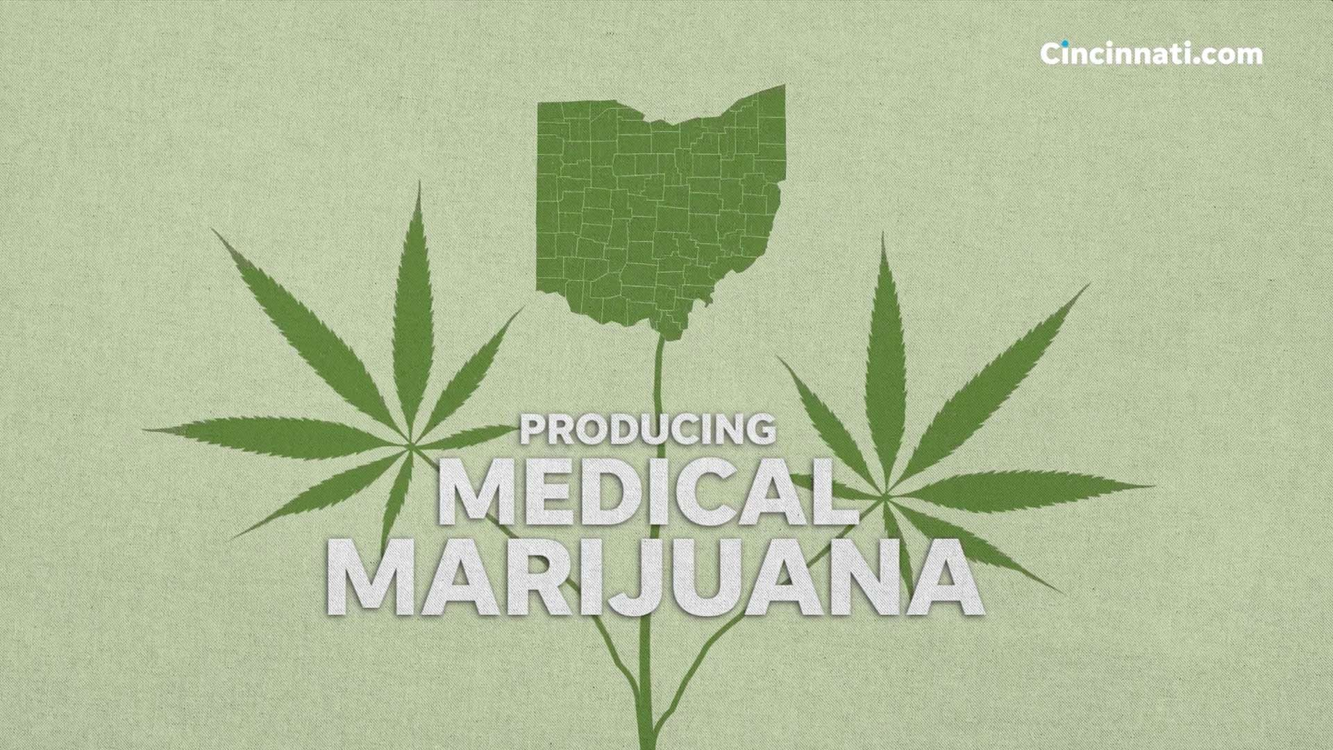 Growing medical marijuana: Ohio's seed to sale process