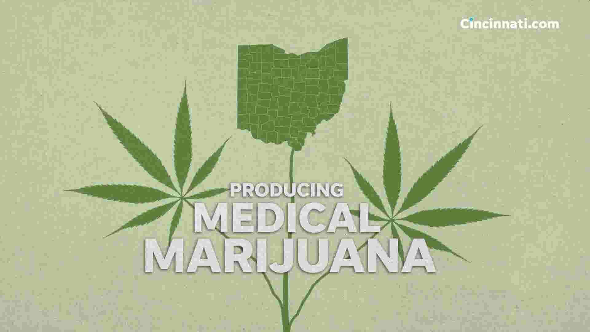 Growing medical marijuana: Ohio's seed to sale process