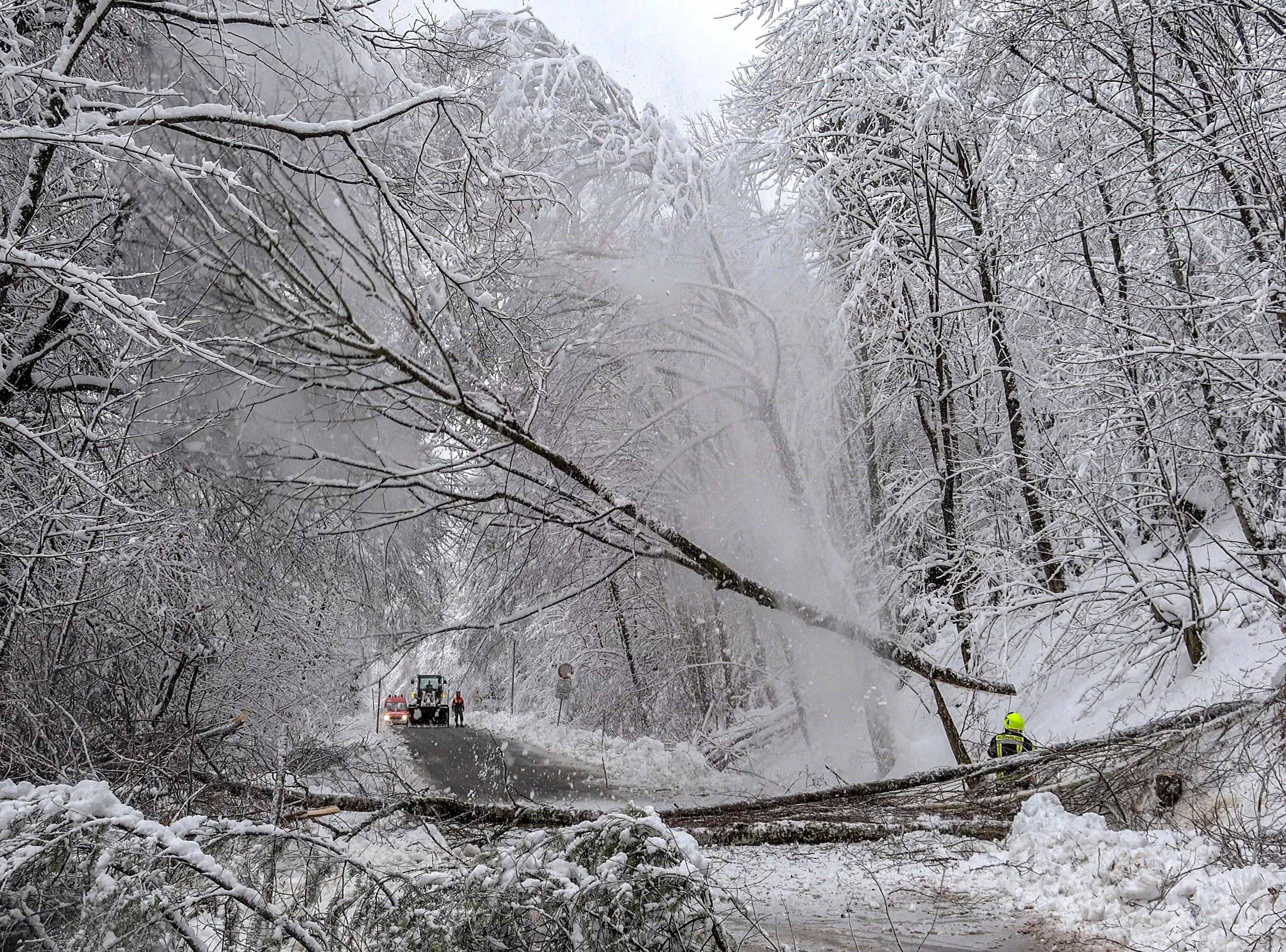 A firefighter slogs snow-covered trees on a road in Schaufling, southern Germany, Wednesday, Jan. 9, 2019.