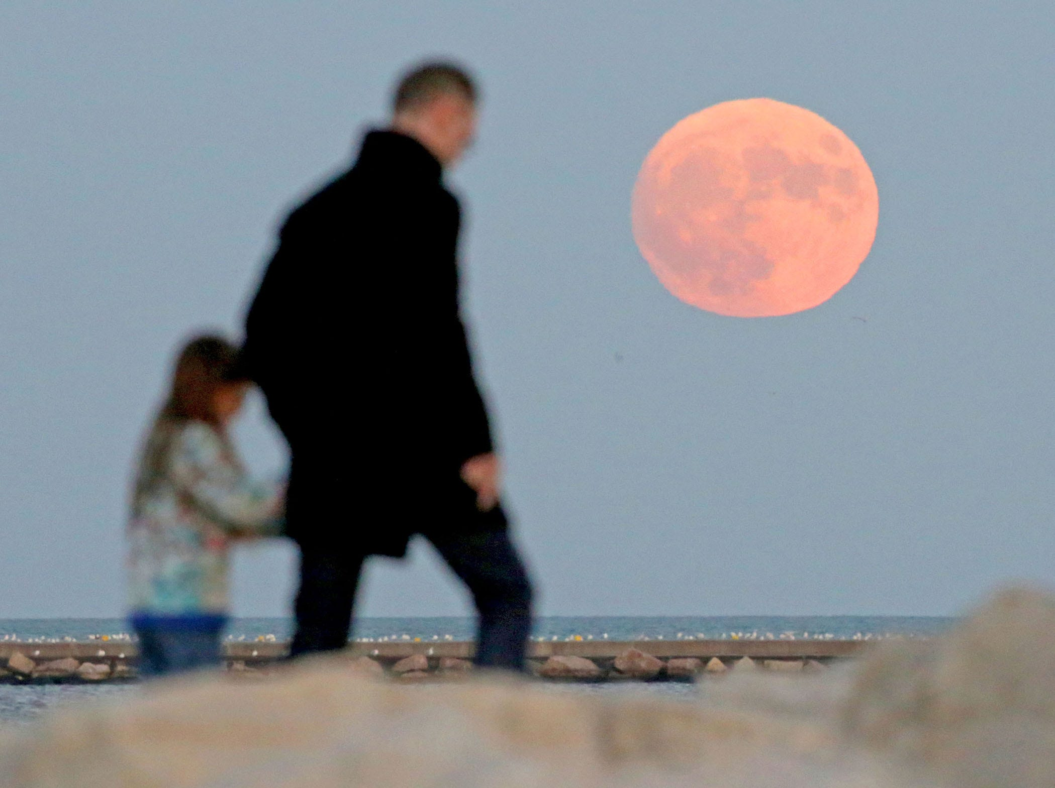 John Leyland of Oak Park, Illinois, walks with his daughter, Vivienne Kim, 9, as they were watching the moon rise over Lake Michigan near Discovery World in Milwaukee Nov. 13, 2016. The record-breaking supermoon was the  closest full moon of the year.