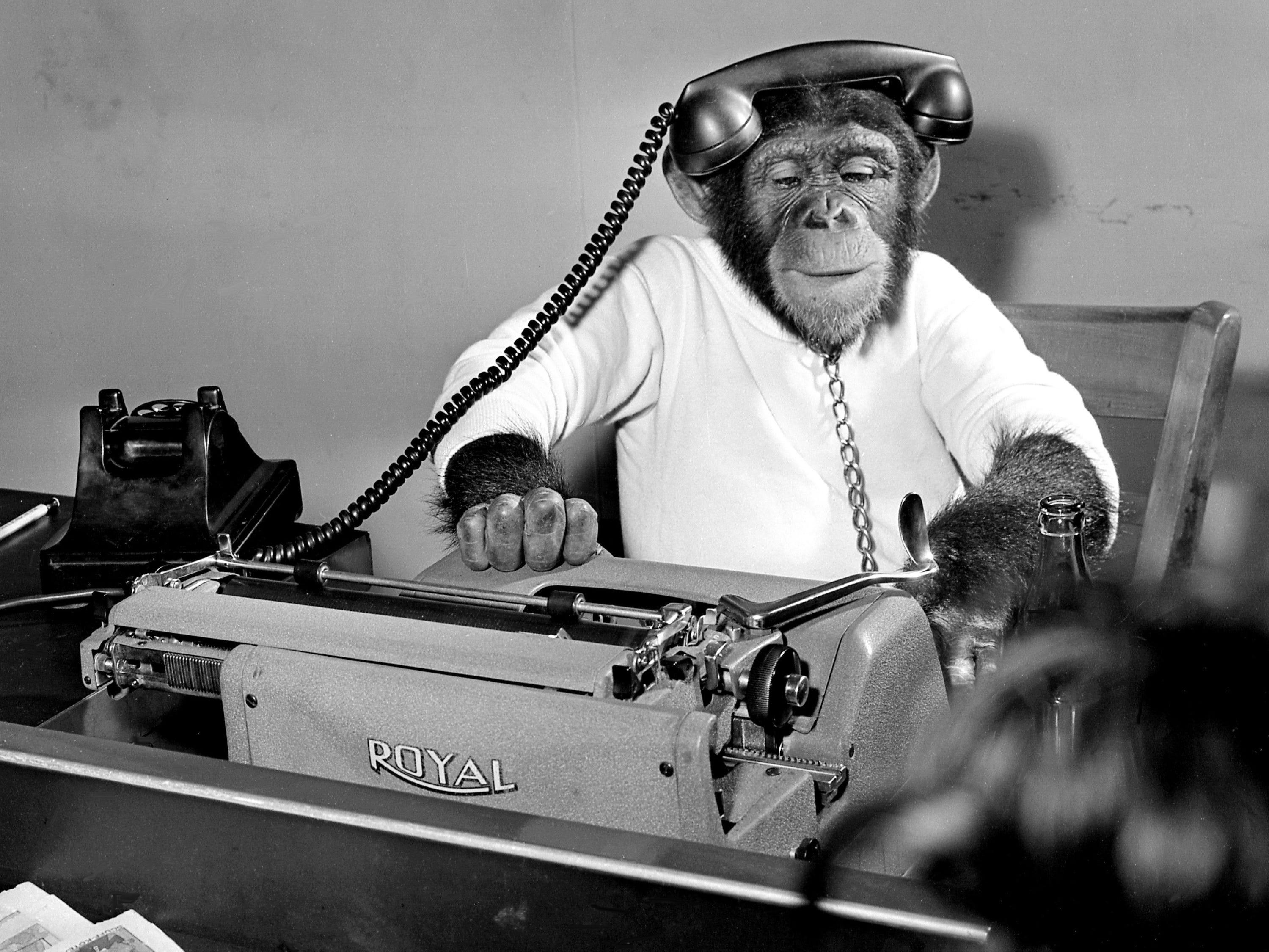Martha Chimpanzees shows off her skill on the phone and typewriter at the office of The Tennessean on Sept. 20, 1965. The 4-year-old has the job of publicity agent for the Siberian Giant and Albino sideshows of the Gooding Million Dollar Midway at the Tennessee State Fair.