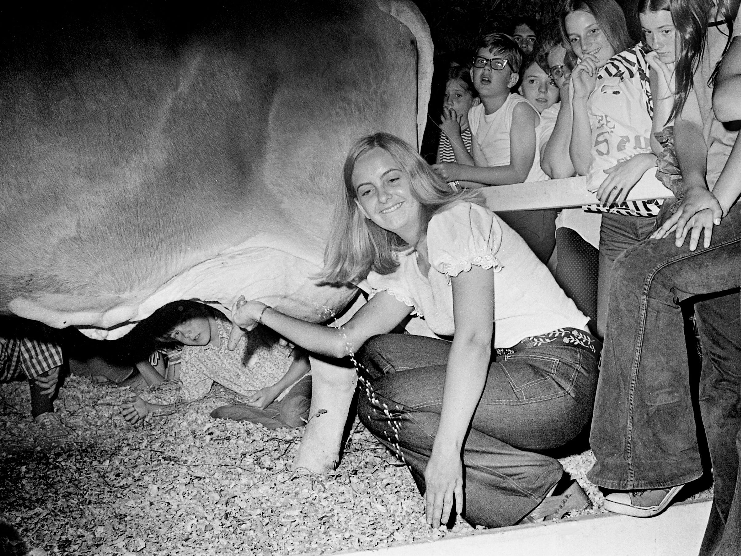 Tennessean reporter Kathleen Gallagher tries her hand at milking a cow in a target-squirting contest at Rivergate Mall on June 7, 1973, sponsored by the Tennessee Dairy Council.