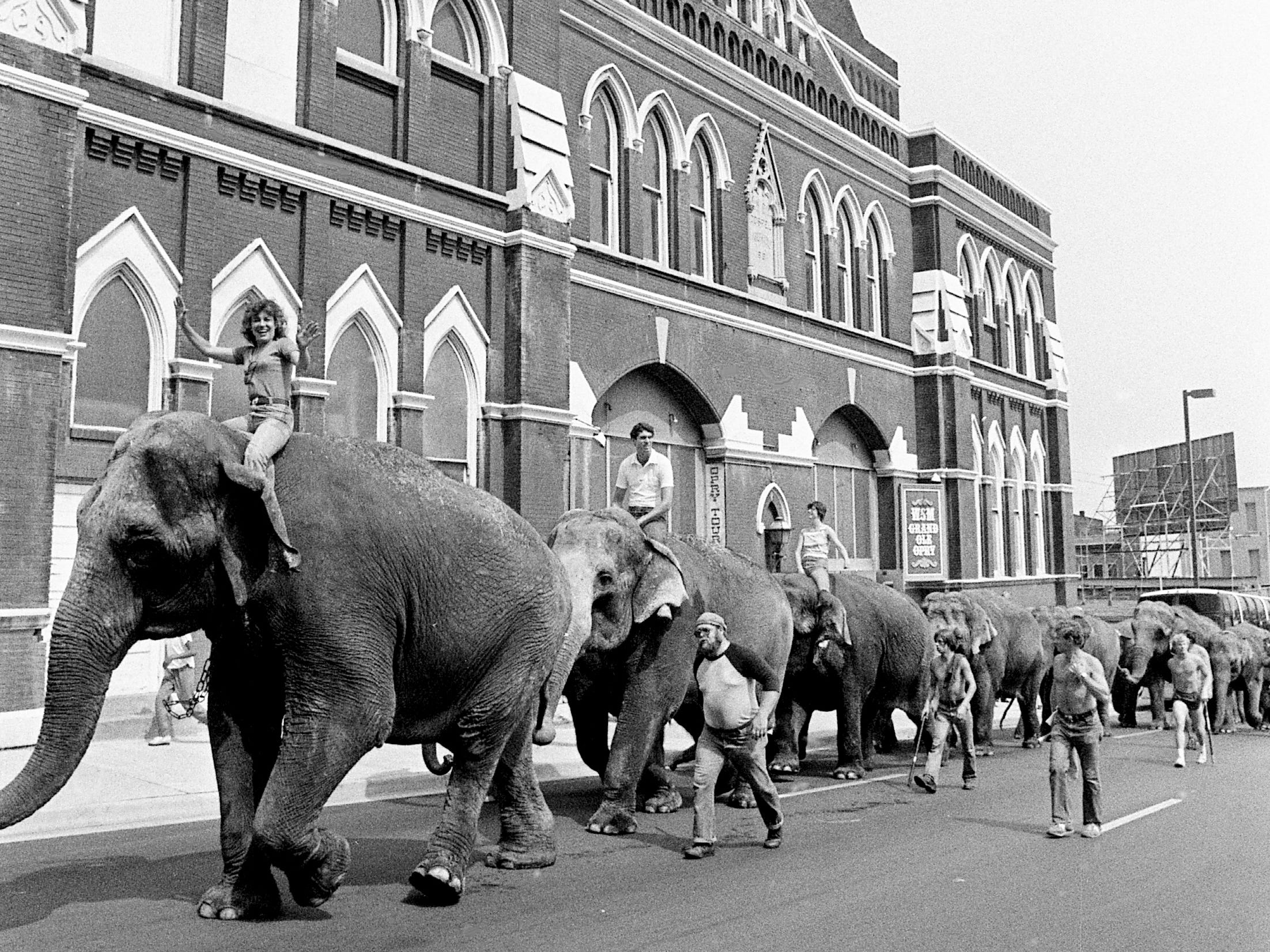 Tennessean music reporter Sandy Neese, front, takes the ride of her life on the back of Big Betty, the largest of 21 Asian elephants in the Ringling Bros. and Barnum & Bailey Circus. The group passes the Ryman Auditorium on June 20, 1983, to head to Municipal Auditorium for the upcoming circus.