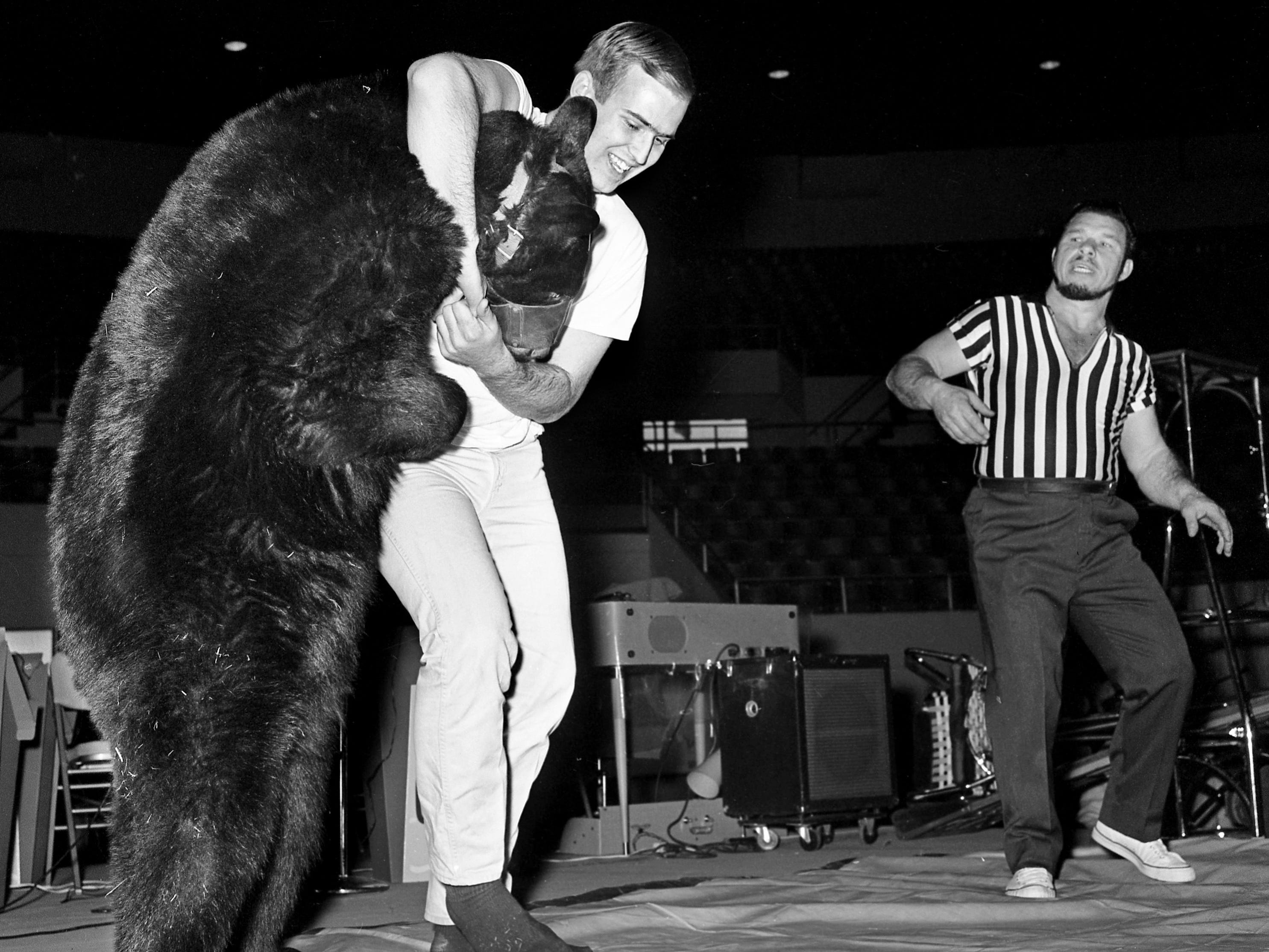 Tennessean reporter Frank Sutherland tussles with Victor the Wrestling Bear under the watchful eye of referee and Victor's trainer Tuffy Truesdell during the Great Lakes of the South Outdoor show at the Municipal Auditorium on March 8, 1966.